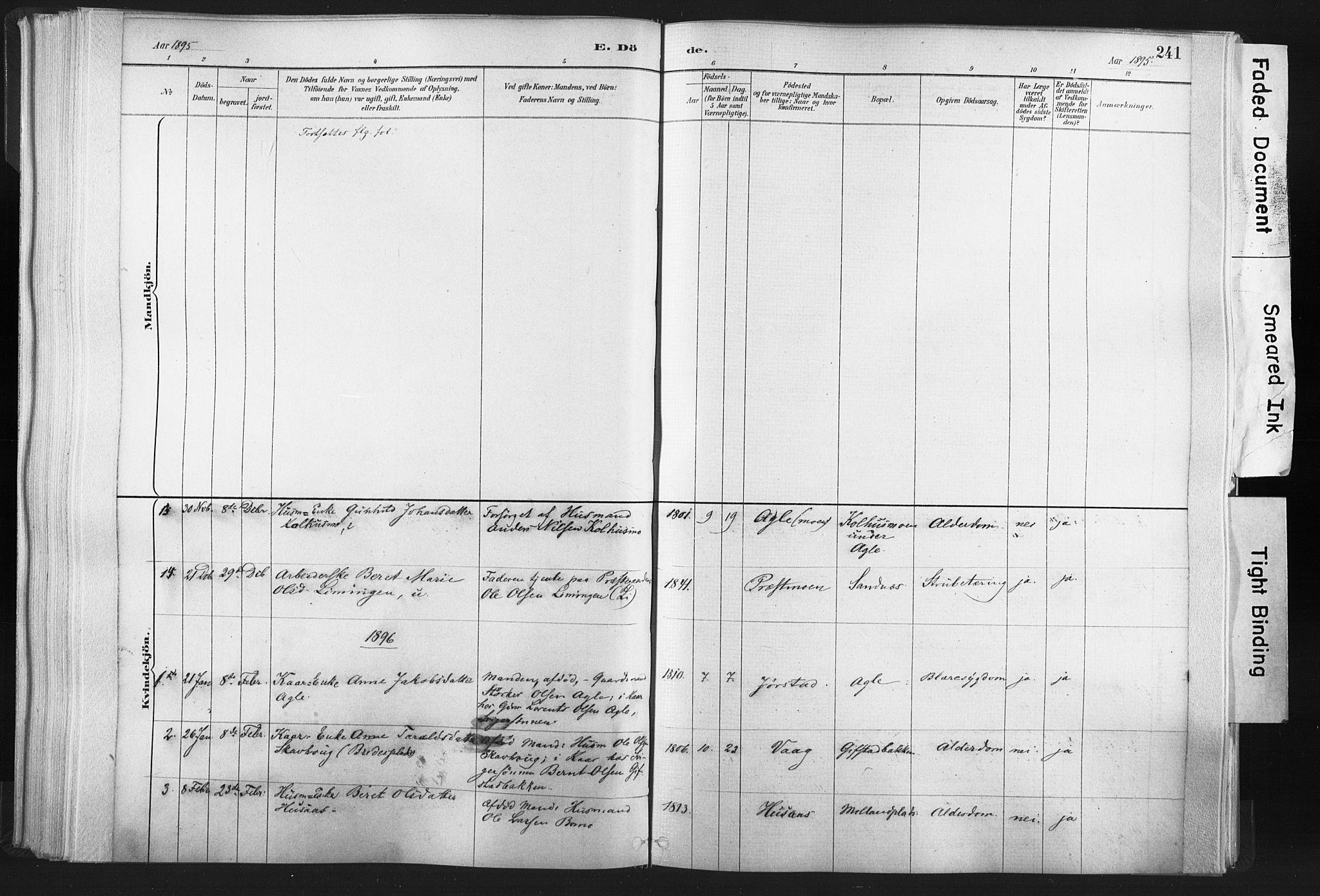SAT, Ministerialprotokoller, klokkerbøker og fødselsregistre - Nord-Trøndelag, 749/L0474: Ministerialbok nr. 749A08, 1887-1903, s. 241
