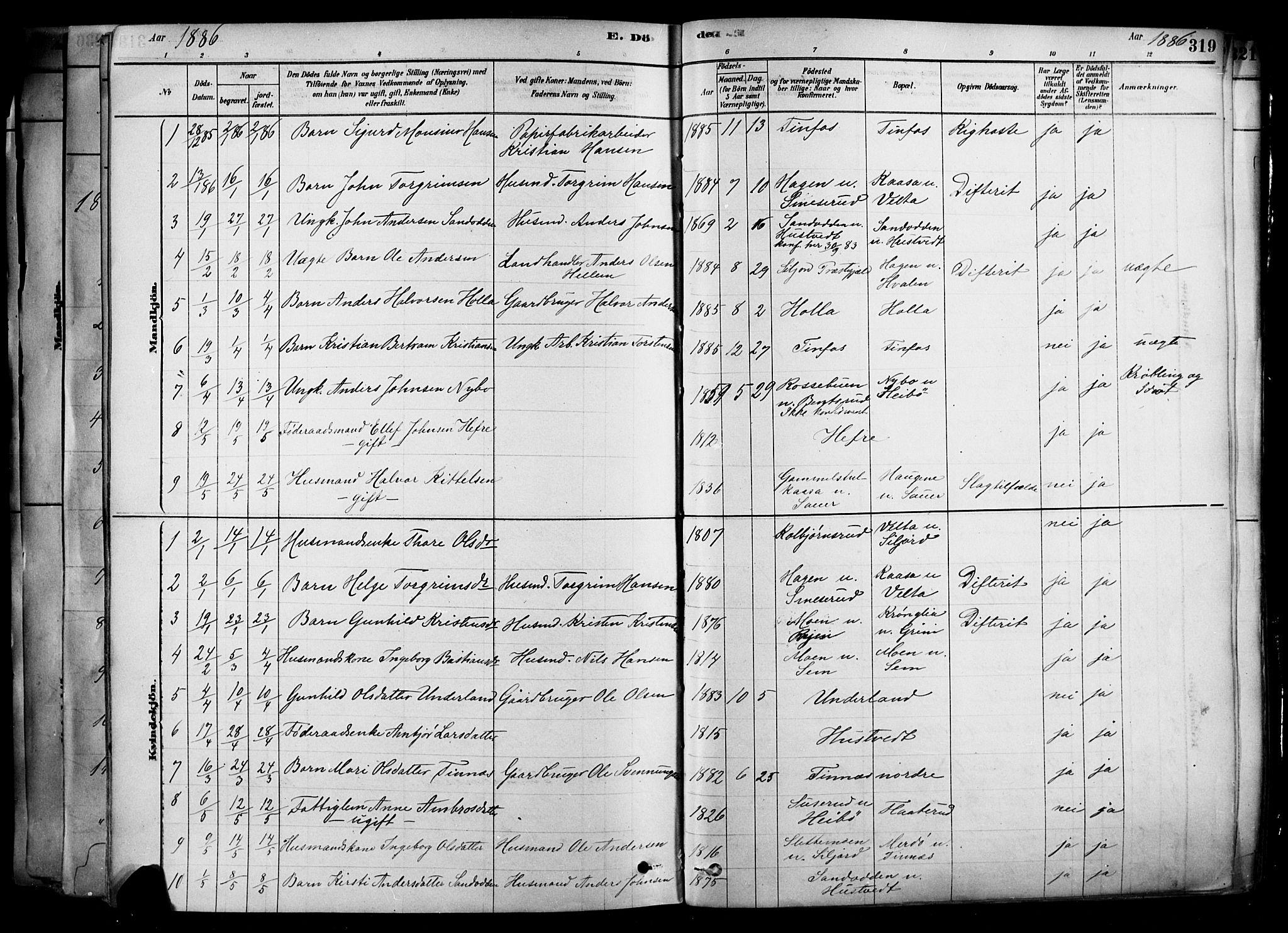 SAKO, Heddal kirkebøker, F/Fa/L0008: Ministerialbok nr. I 8, 1878-1903, s. 319
