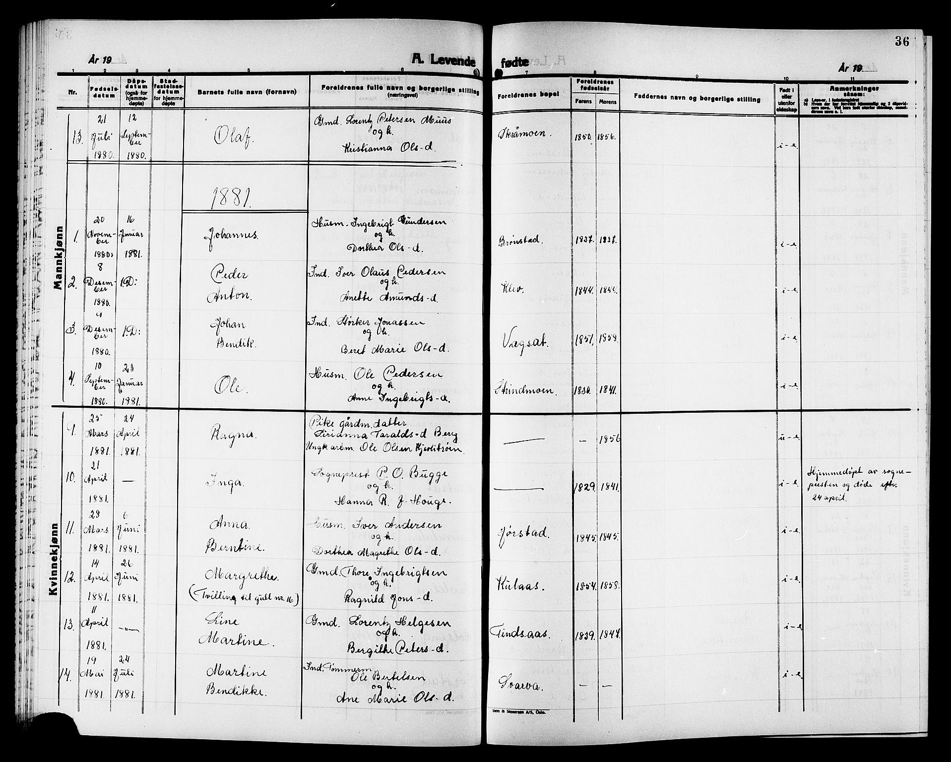 SAT, Ministerialprotokoller, klokkerbøker og fødselsregistre - Nord-Trøndelag, 749/L0486: Ministerialbok nr. 749D02, 1873-1887, s. 36