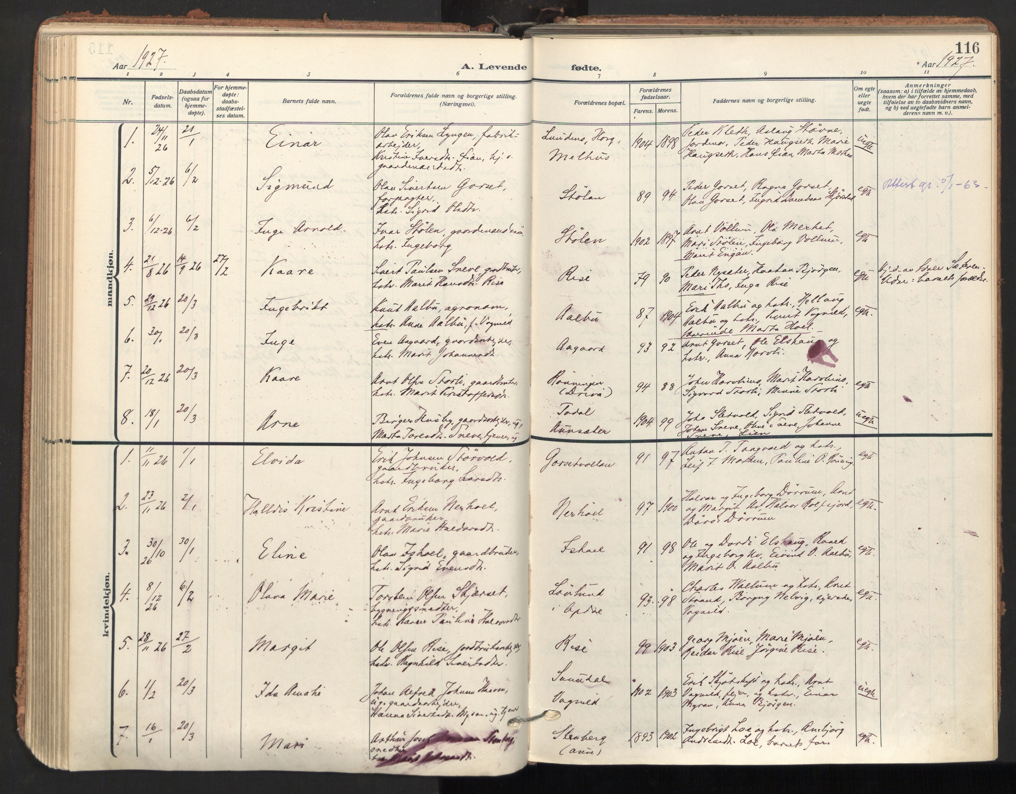 SAT, Ministerialprotokoller, klokkerbøker og fødselsregistre - Sør-Trøndelag, 678/L0909: Ministerialbok nr. 678A17, 1912-1930, s. 116