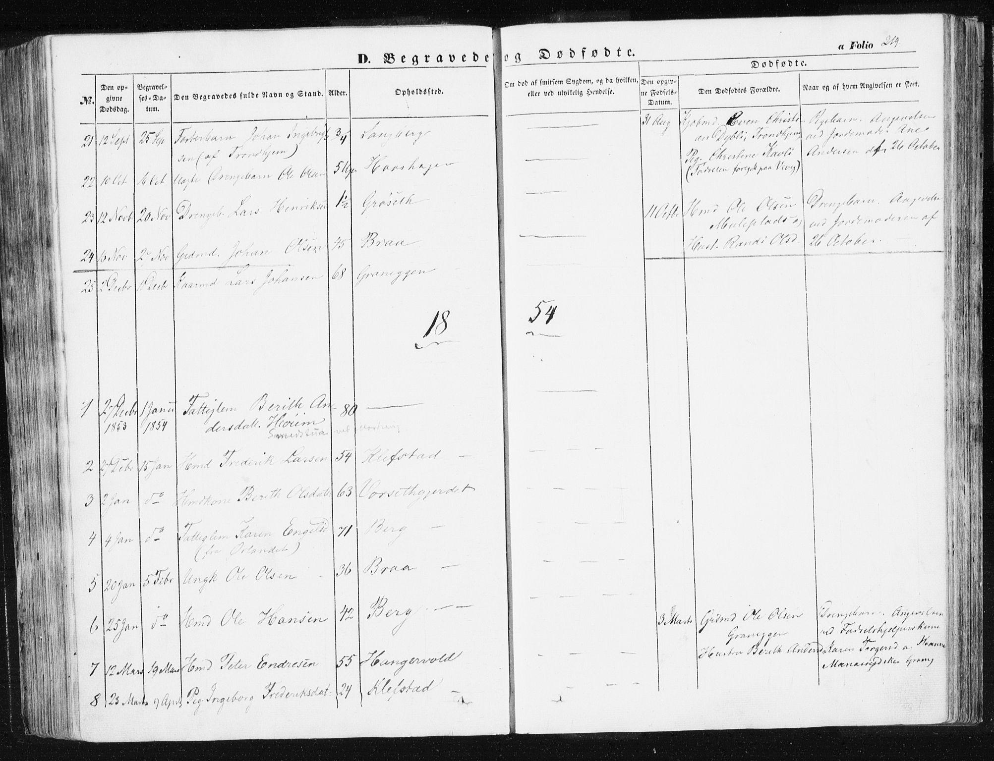SAT, Ministerialprotokoller, klokkerbøker og fødselsregistre - Sør-Trøndelag, 612/L0376: Ministerialbok nr. 612A08, 1846-1859, s. 219