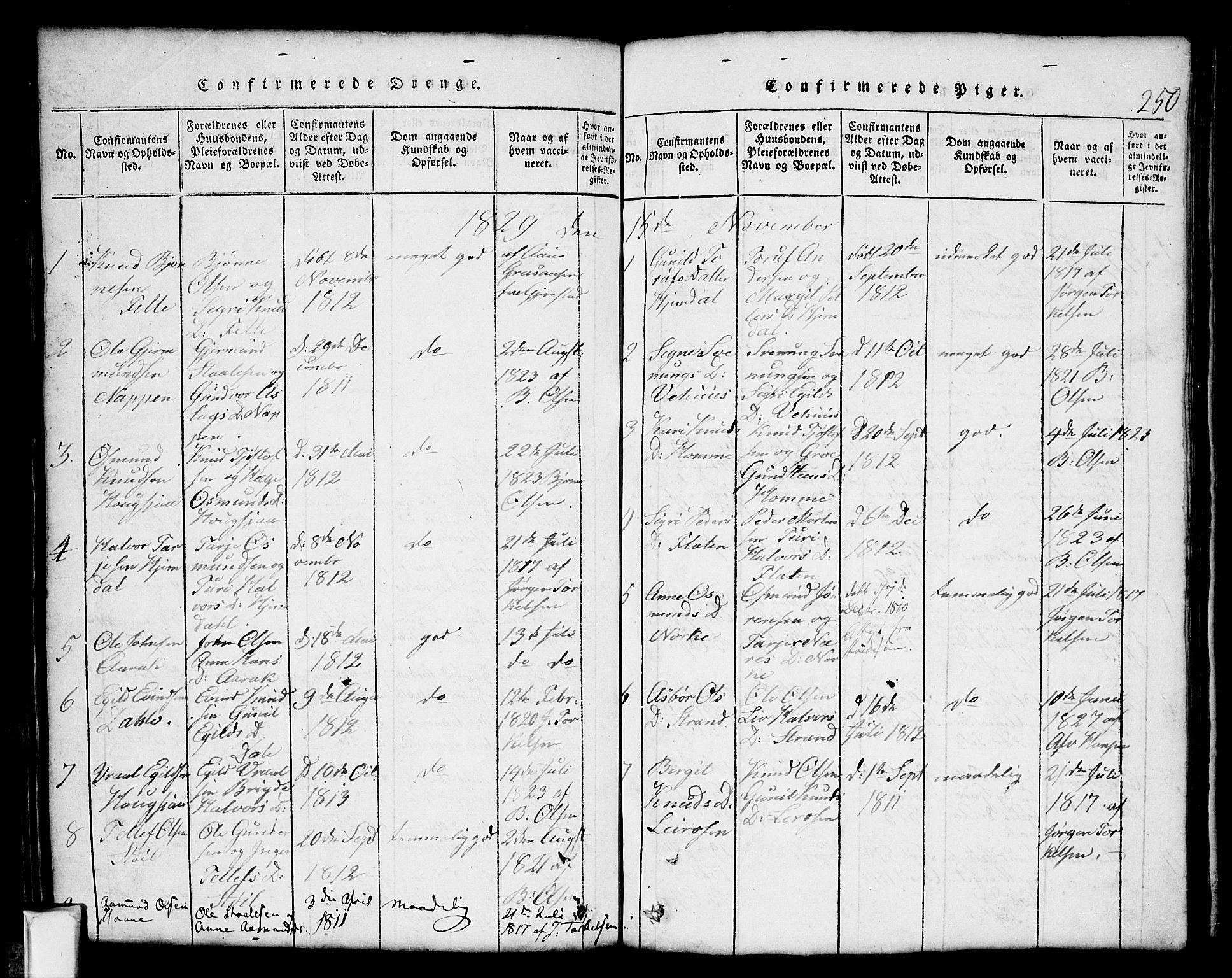 SAKO, Nissedal kirkebøker, G/Gb/L0001: Klokkerbok nr. II 1, 1814-1862, s. 250