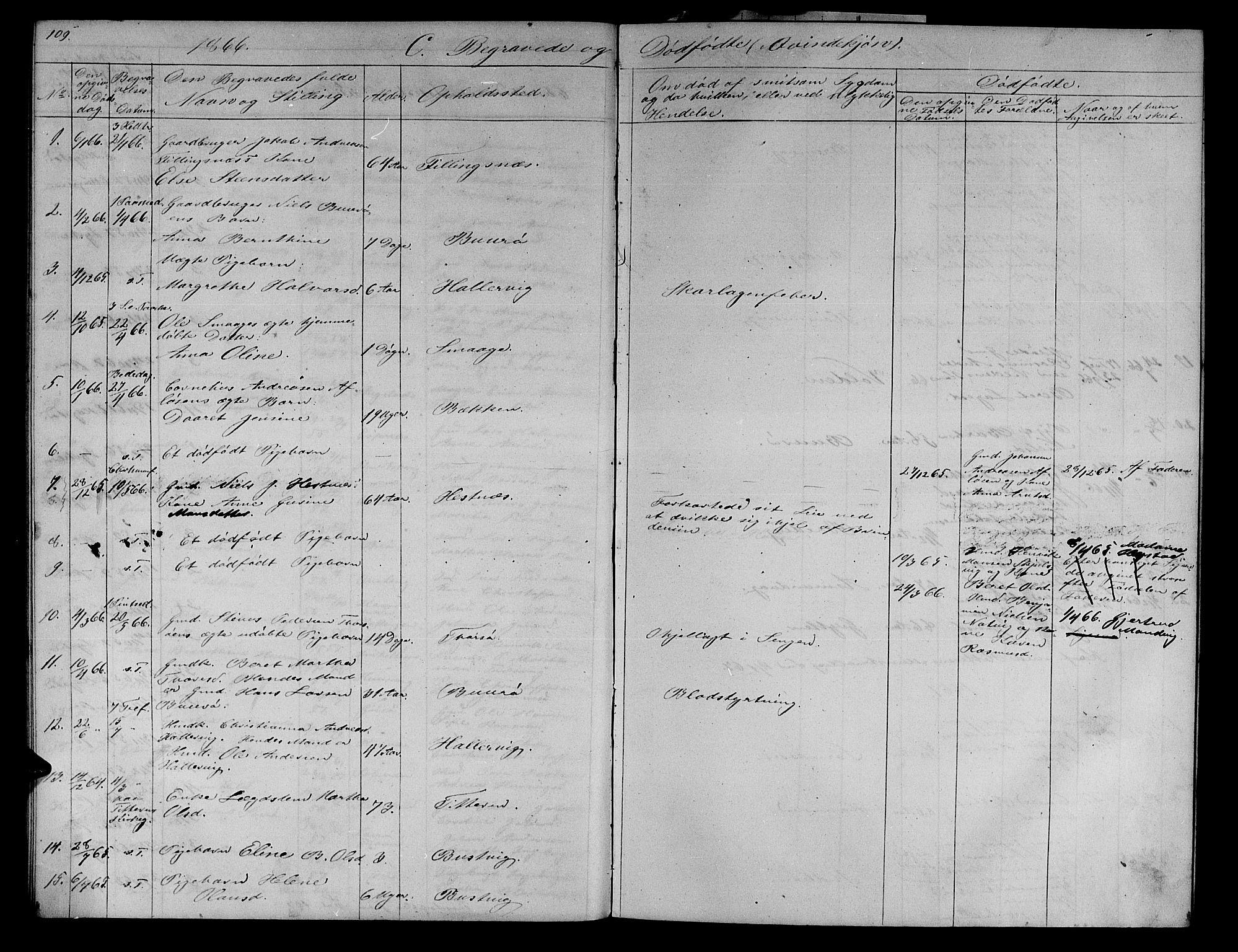 SAT, Ministerialprotokoller, klokkerbøker og fødselsregistre - Sør-Trøndelag, 634/L0539: Klokkerbok nr. 634C01, 1866-1873, s. 109