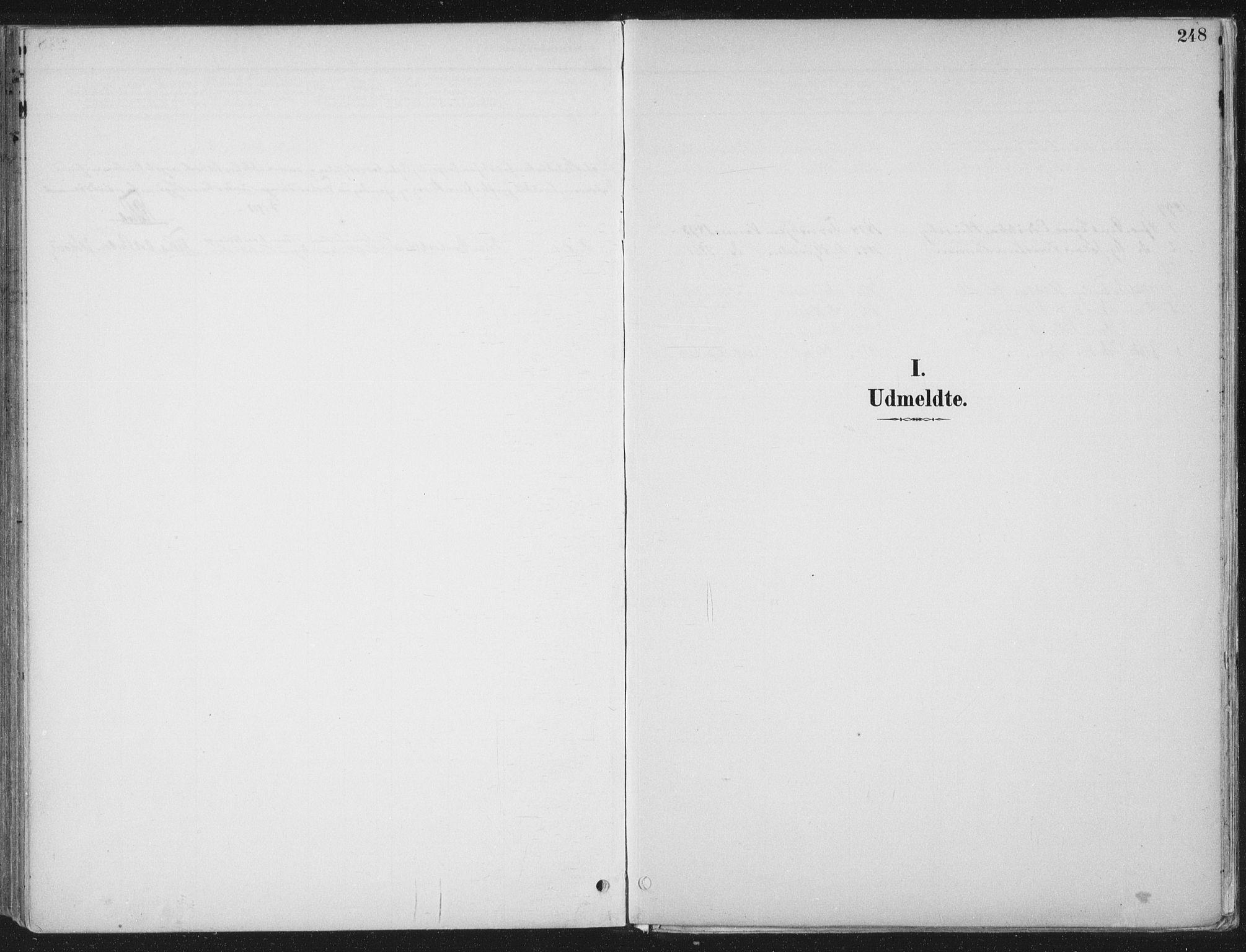 SAT, Ministerialprotokoller, klokkerbøker og fødselsregistre - Nord-Trøndelag, 709/L0082: Ministerialbok nr. 709A22, 1896-1916, s. 248