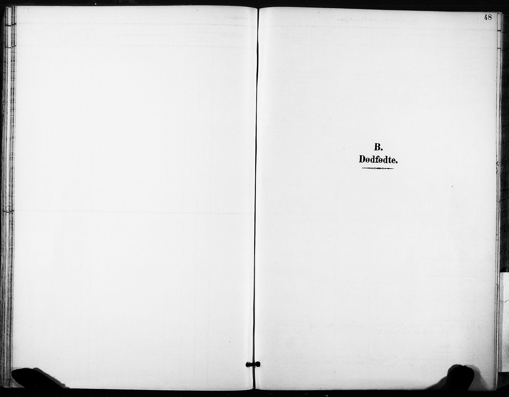 SAT, Ministerialprotokoller, klokkerbøker og fødselsregistre - Sør-Trøndelag, 685/L0973: Ministerialbok nr. 685A10, 1891-1907, s. 48