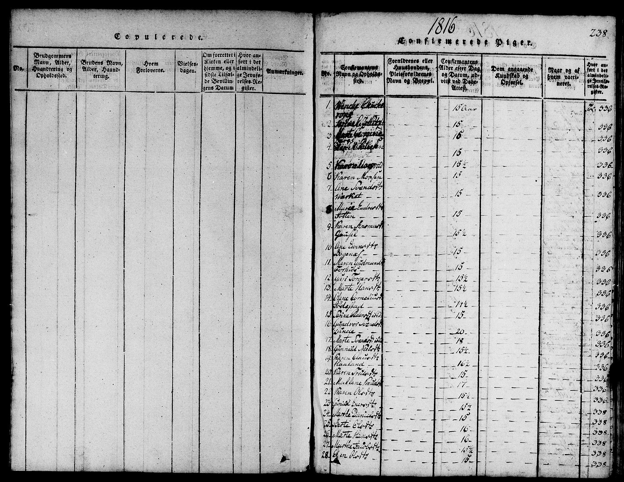 SAST, Domkirken sokneprestkontor, 30/30BA/L0008: Ministerialbok nr. A 8, 1816-1821, s. 238