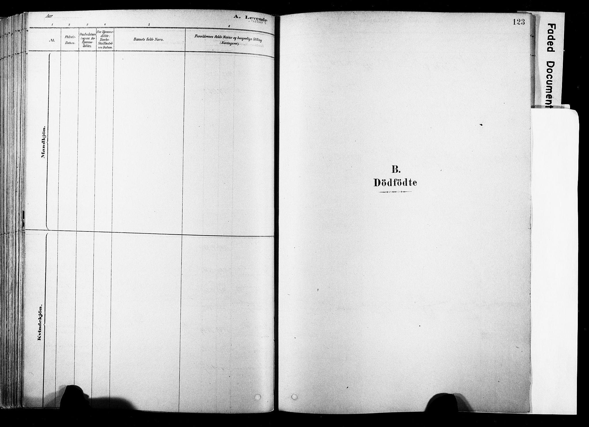 SAKO, Strømsø kirkebøker, F/Fb/L0006: Ministerialbok nr. II 6, 1879-1910, s. 123