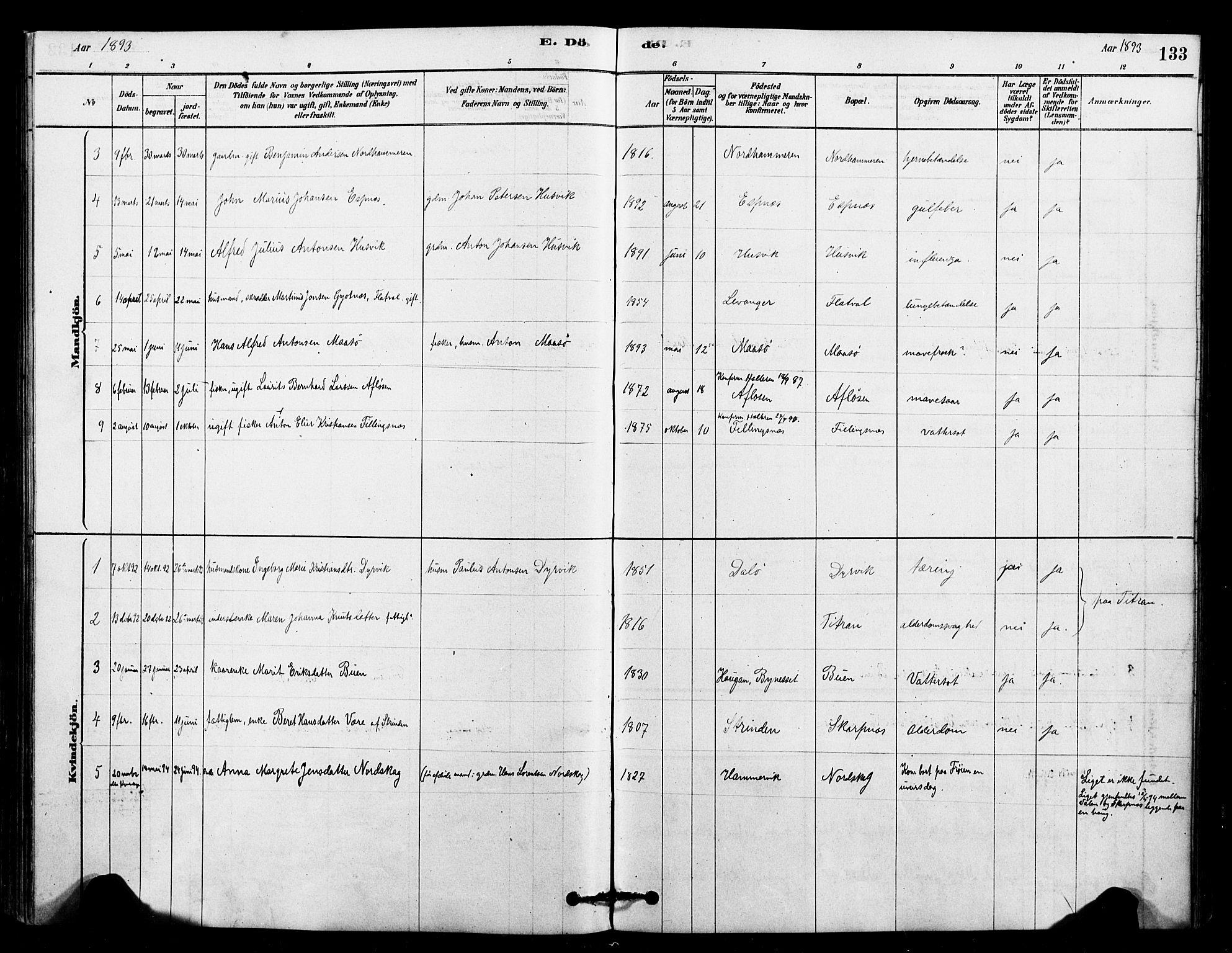 SAT, Ministerialprotokoller, klokkerbøker og fødselsregistre - Sør-Trøndelag, 641/L0595: Ministerialbok nr. 641A01, 1882-1897, s. 133