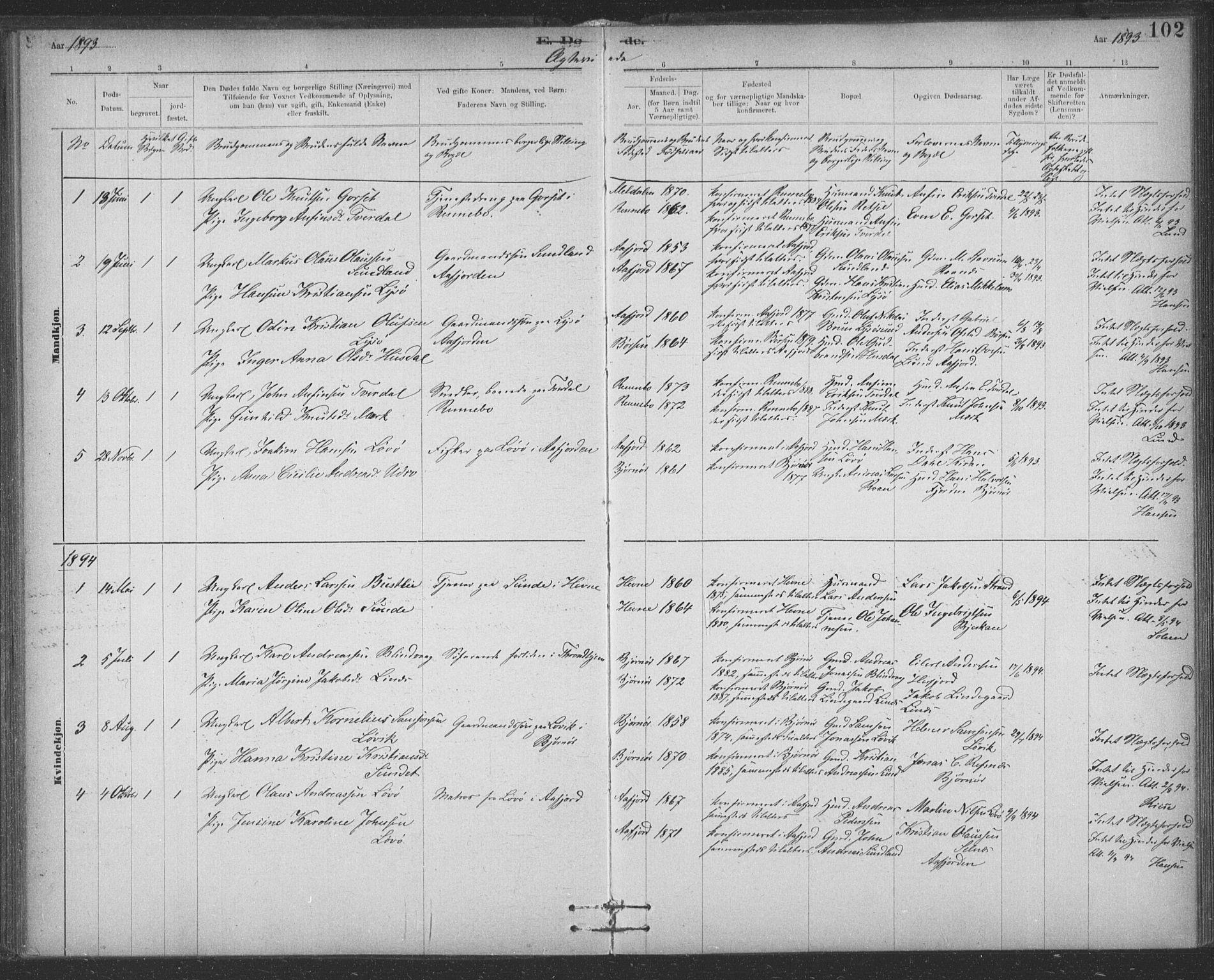 SAT, Ministerialprotokoller, klokkerbøker og fødselsregistre - Sør-Trøndelag, 623/L0470: Ministerialbok nr. 623A04, 1884-1938, s. 102