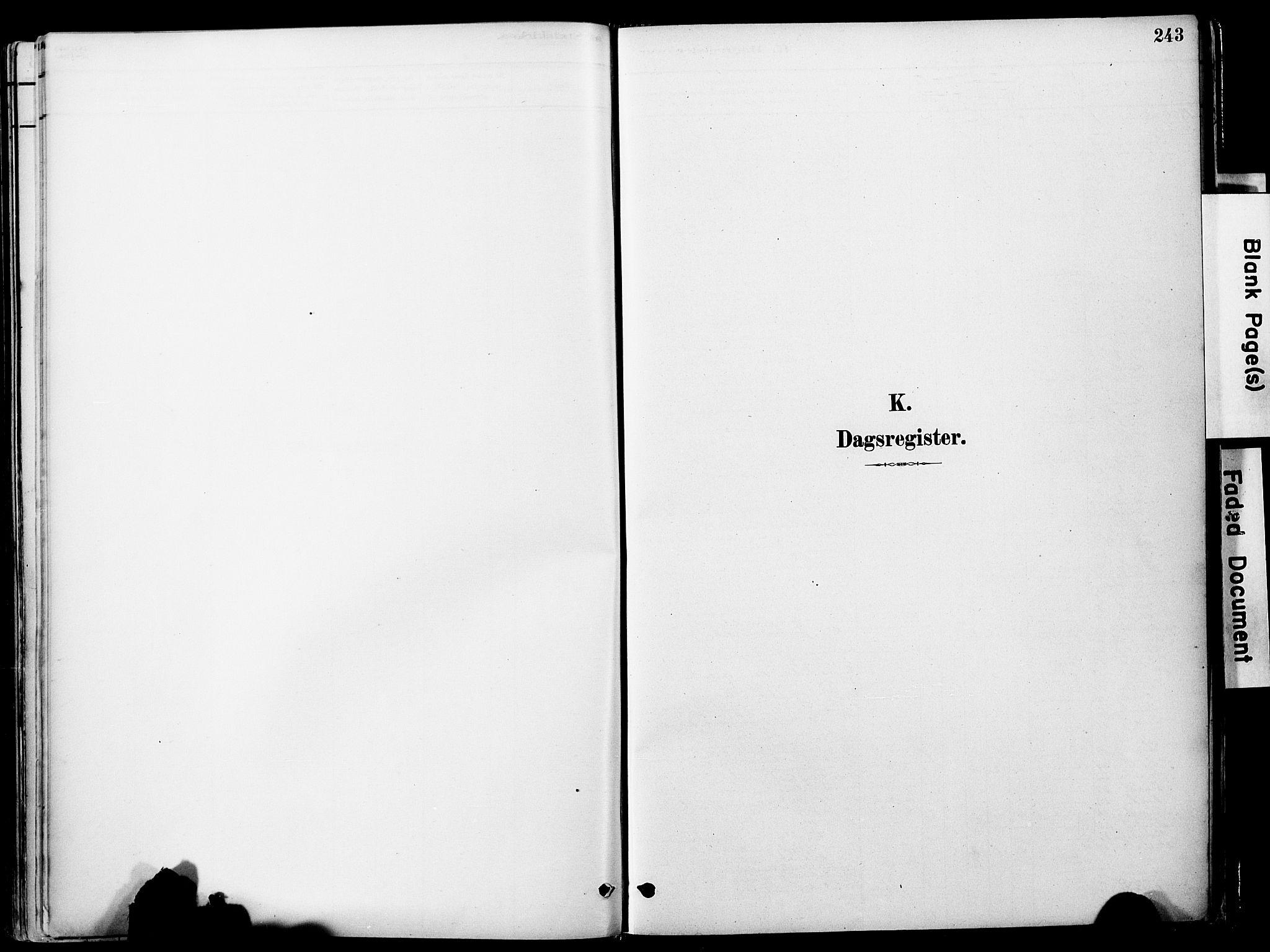 SAT, Ministerialprotokoller, klokkerbøker og fødselsregistre - Sør-Trøndelag, 681/L0933: Ministerialbok nr. 681A11, 1879-1890, s. 243