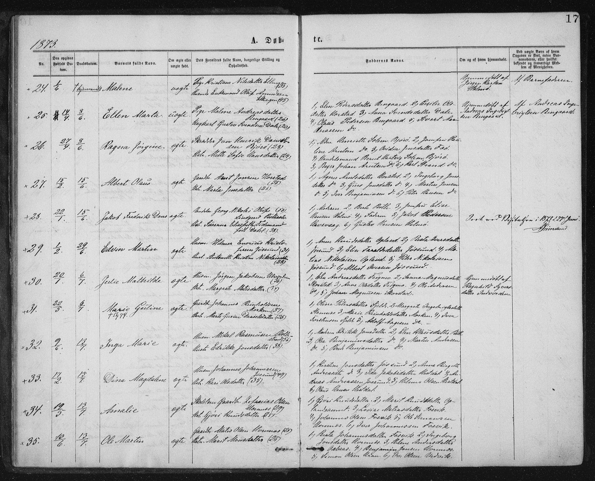 SAT, Ministerialprotokoller, klokkerbøker og fødselsregistre - Nord-Trøndelag, 771/L0596: Ministerialbok nr. 771A03, 1870-1884, s. 17