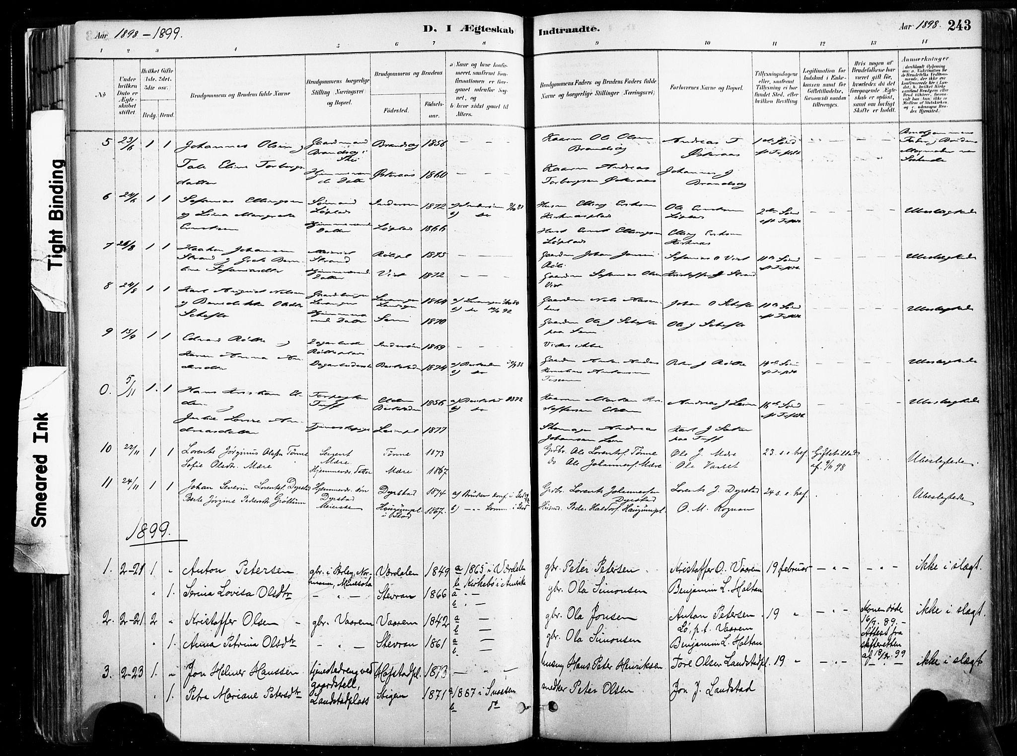 SAT, Ministerialprotokoller, klokkerbøker og fødselsregistre - Nord-Trøndelag, 735/L0351: Ministerialbok nr. 735A10, 1884-1908, s. 243