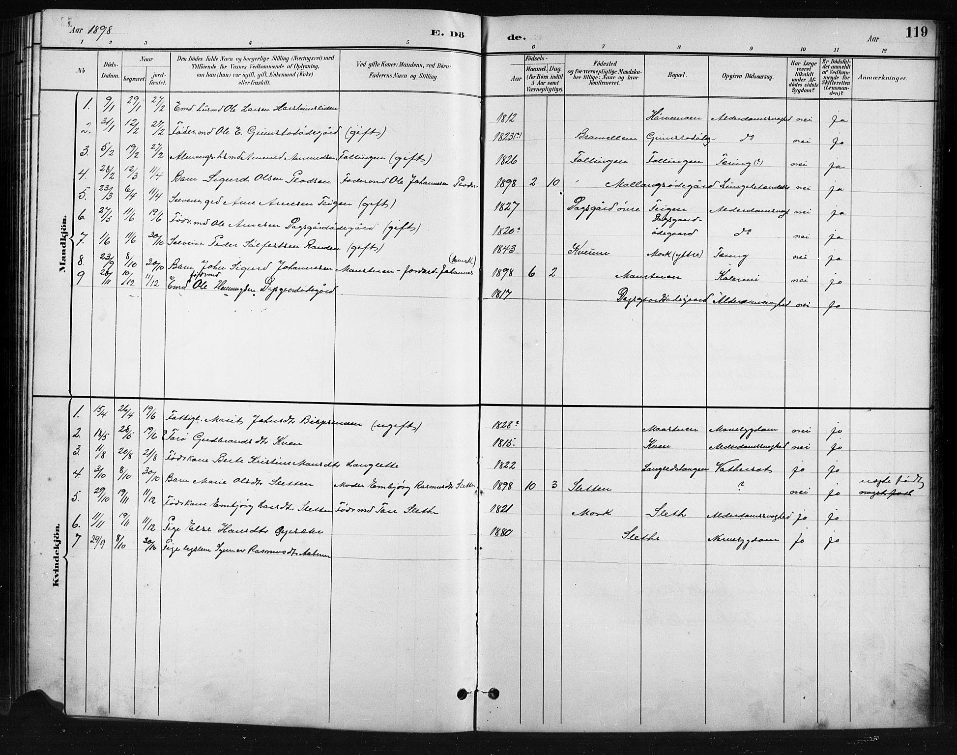SAH, Skjåk prestekontor, Klokkerbok nr. 4, 1895-1921, s. 119