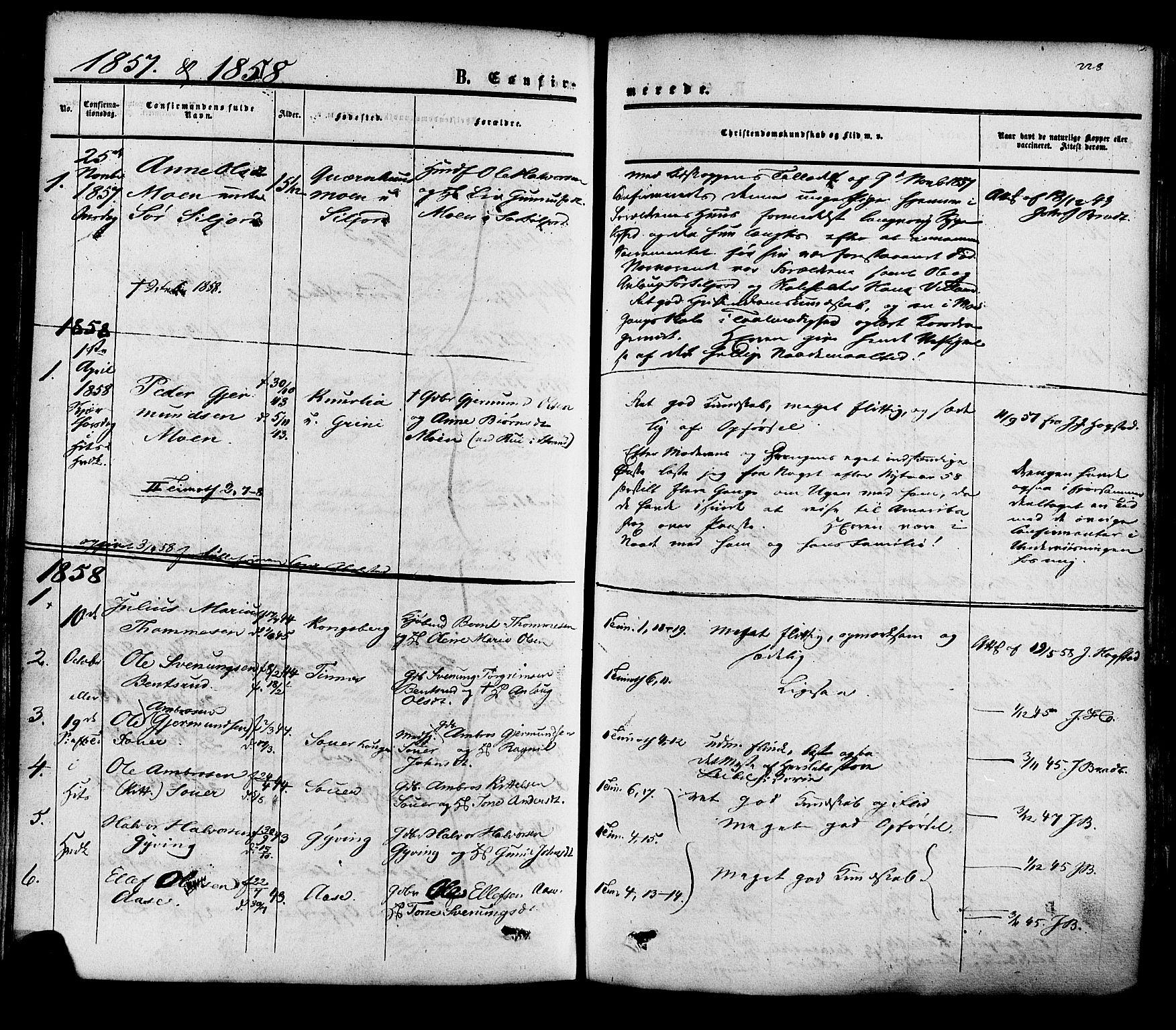 SAKO, Heddal kirkebøker, F/Fa/L0007: Ministerialbok nr. I 7, 1855-1877, s. 228