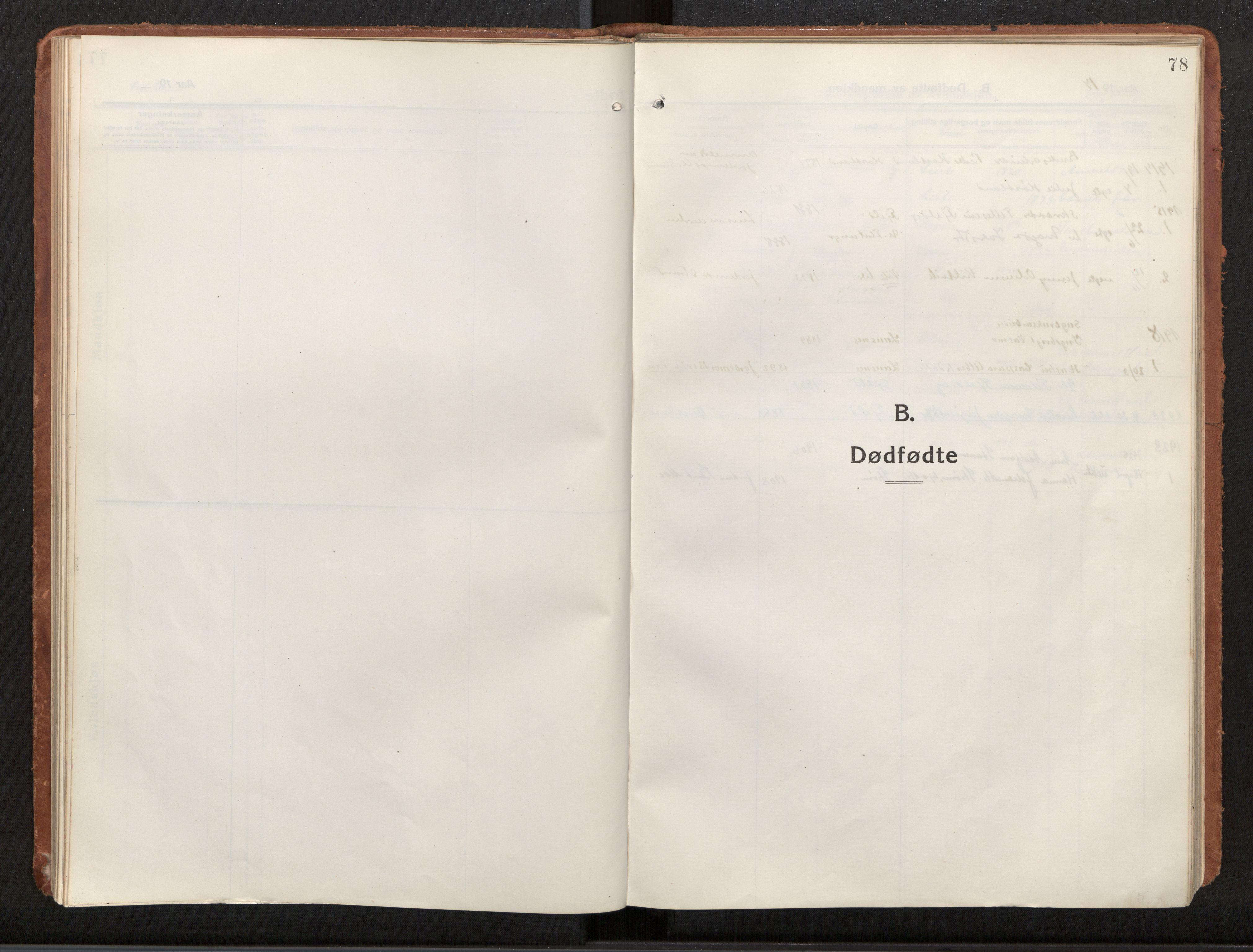 SAT, Ministerialprotokoller, klokkerbøker og fødselsregistre - Nord-Trøndelag, 772/L0604: Ministerialbok nr. 772A02, 1913-1937, s. 78