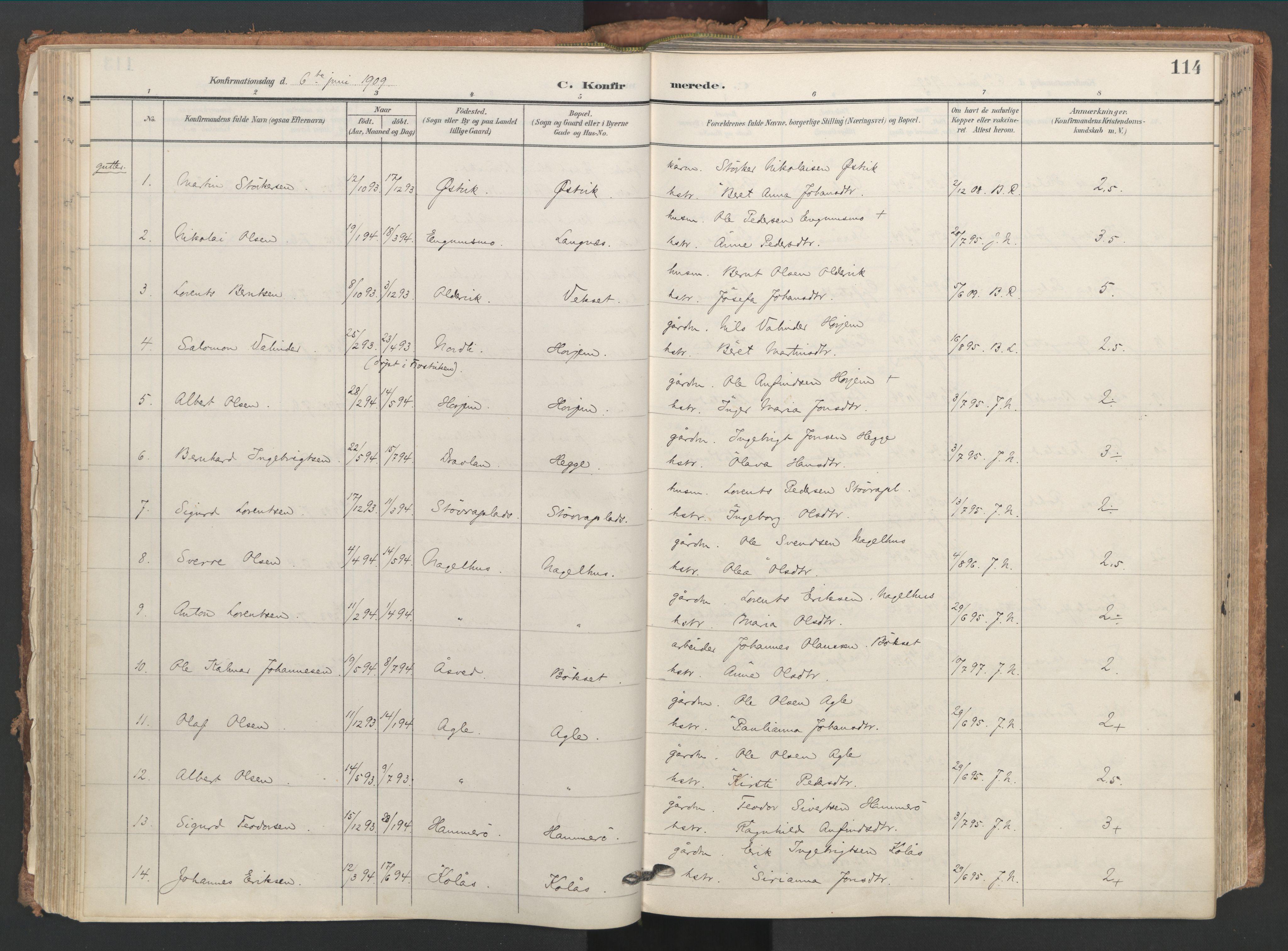 SAT, Ministerialprotokoller, klokkerbøker og fødselsregistre - Nord-Trøndelag, 749/L0477: Ministerialbok nr. 749A11, 1902-1927, s. 114