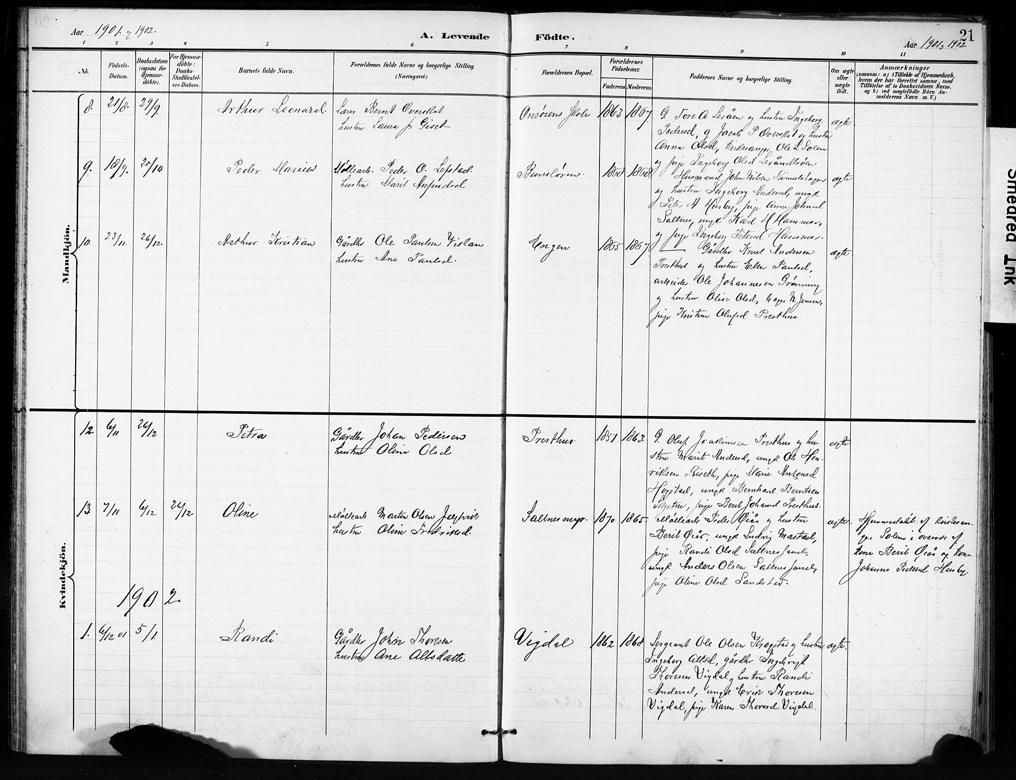 SAT, Ministerialprotokoller, klokkerbøker og fødselsregistre - Sør-Trøndelag, 666/L0787: Ministerialbok nr. 666A05, 1895-1908, s. 21
