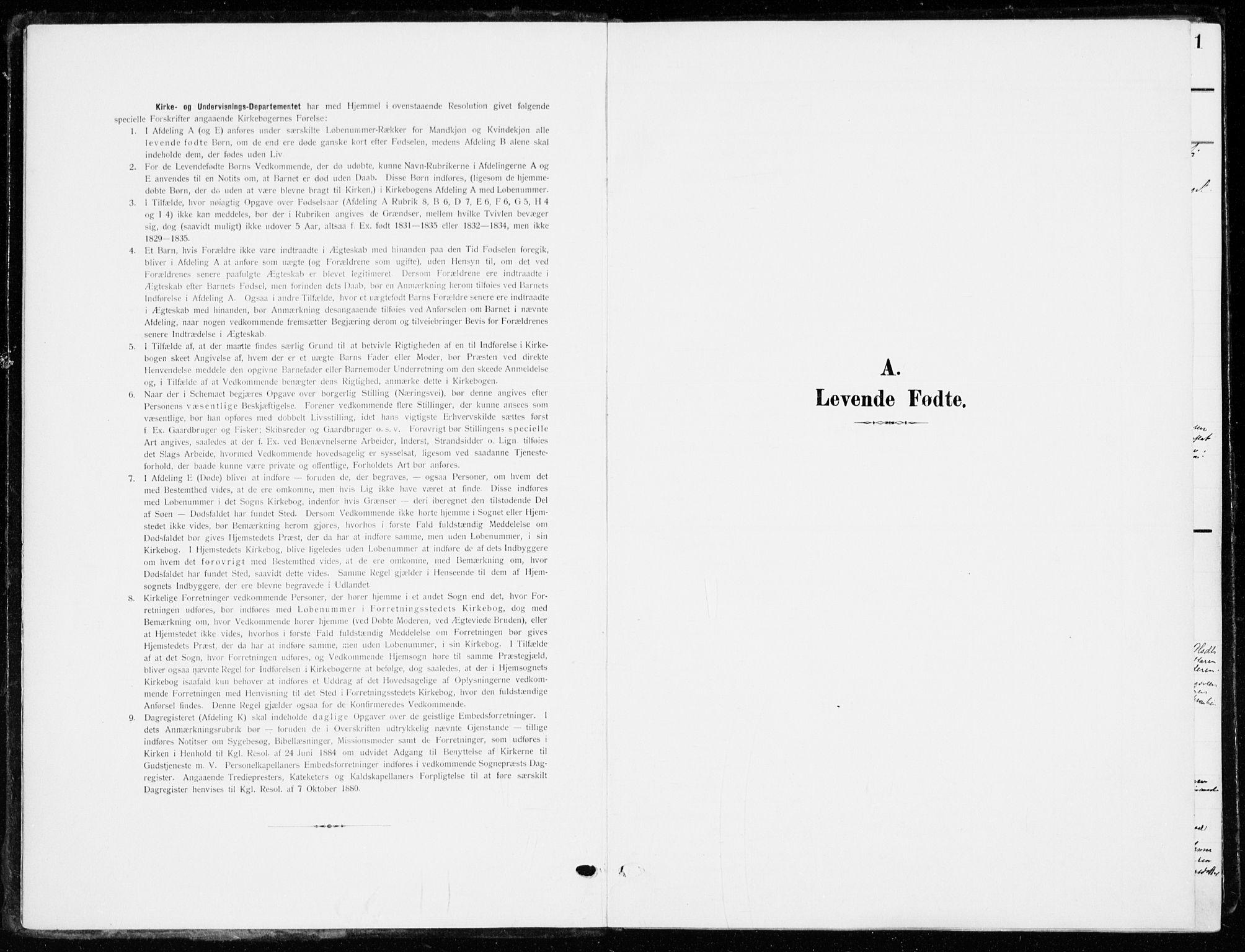 SAH, Ringsaker prestekontor, K/Ka/L0021: Ministerialbok nr. 21, 1905-1920