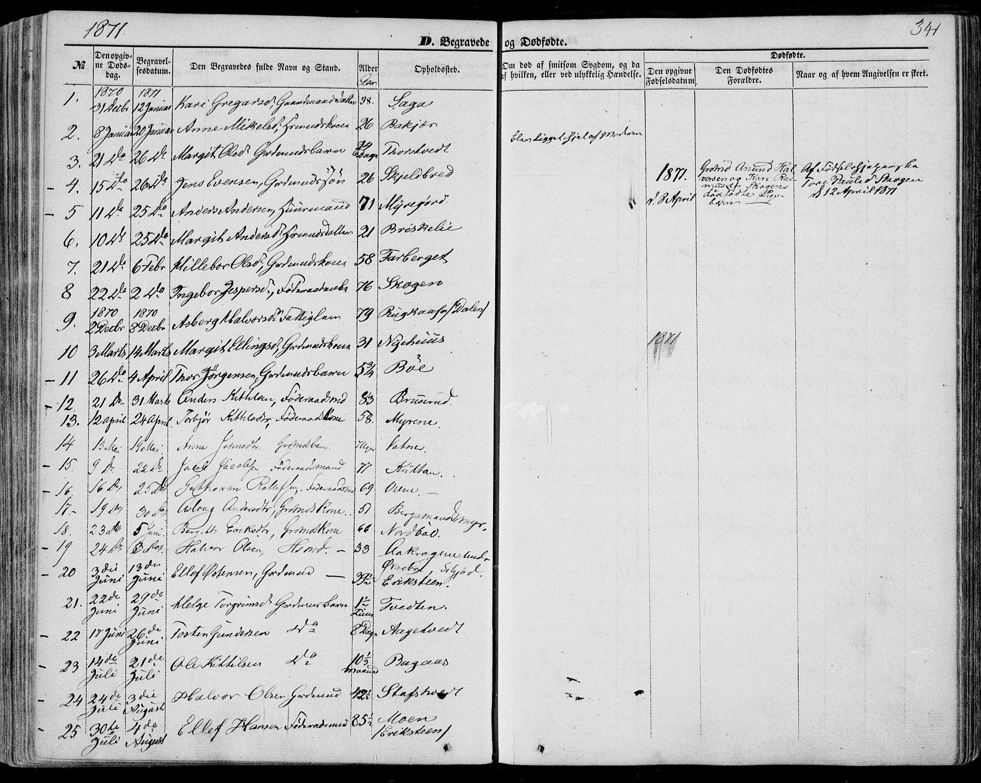SAKO, Bø kirkebøker, F/Fa/L0009: Ministerialbok nr. 9, 1862-1879, s. 341