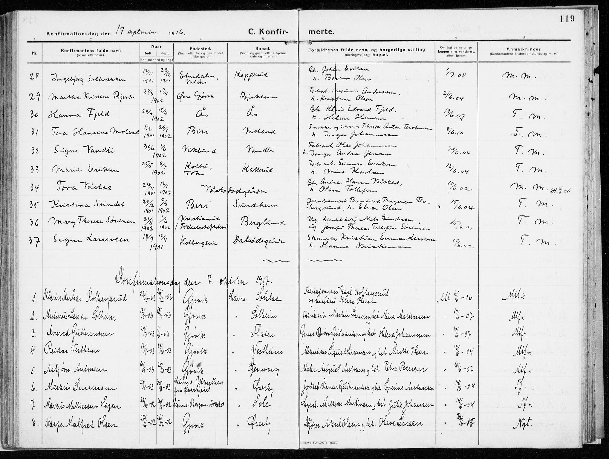 SAH, Vardal prestekontor, H/Ha/Haa/L0017: Ministerialbok nr. 17, 1915-1929, s. 119