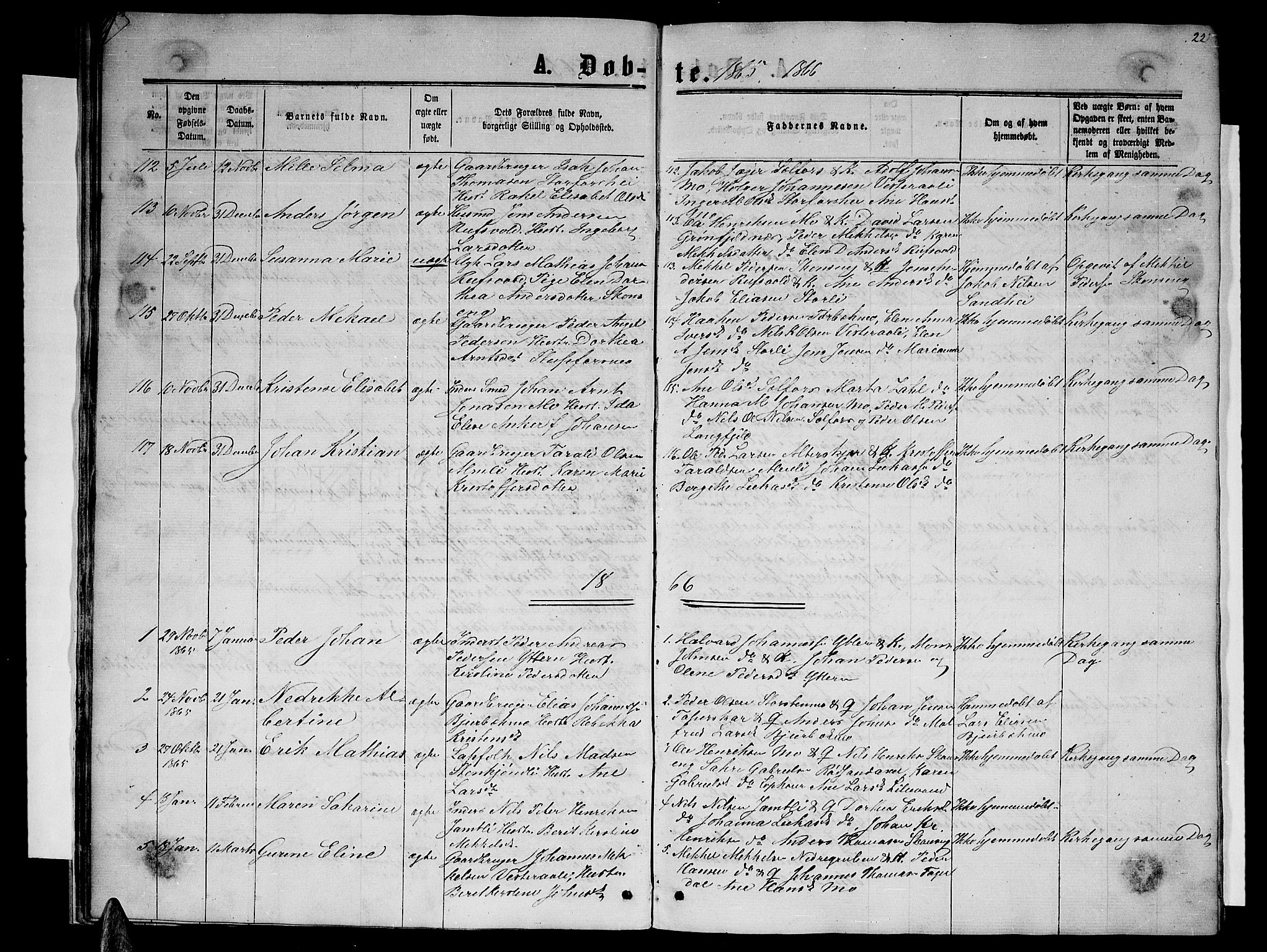 SAT, Ministerialprotokoller, klokkerbøker og fødselsregistre - Nordland, 827/L0415: Klokkerbok nr. 827C04, 1864-1886, s. 22