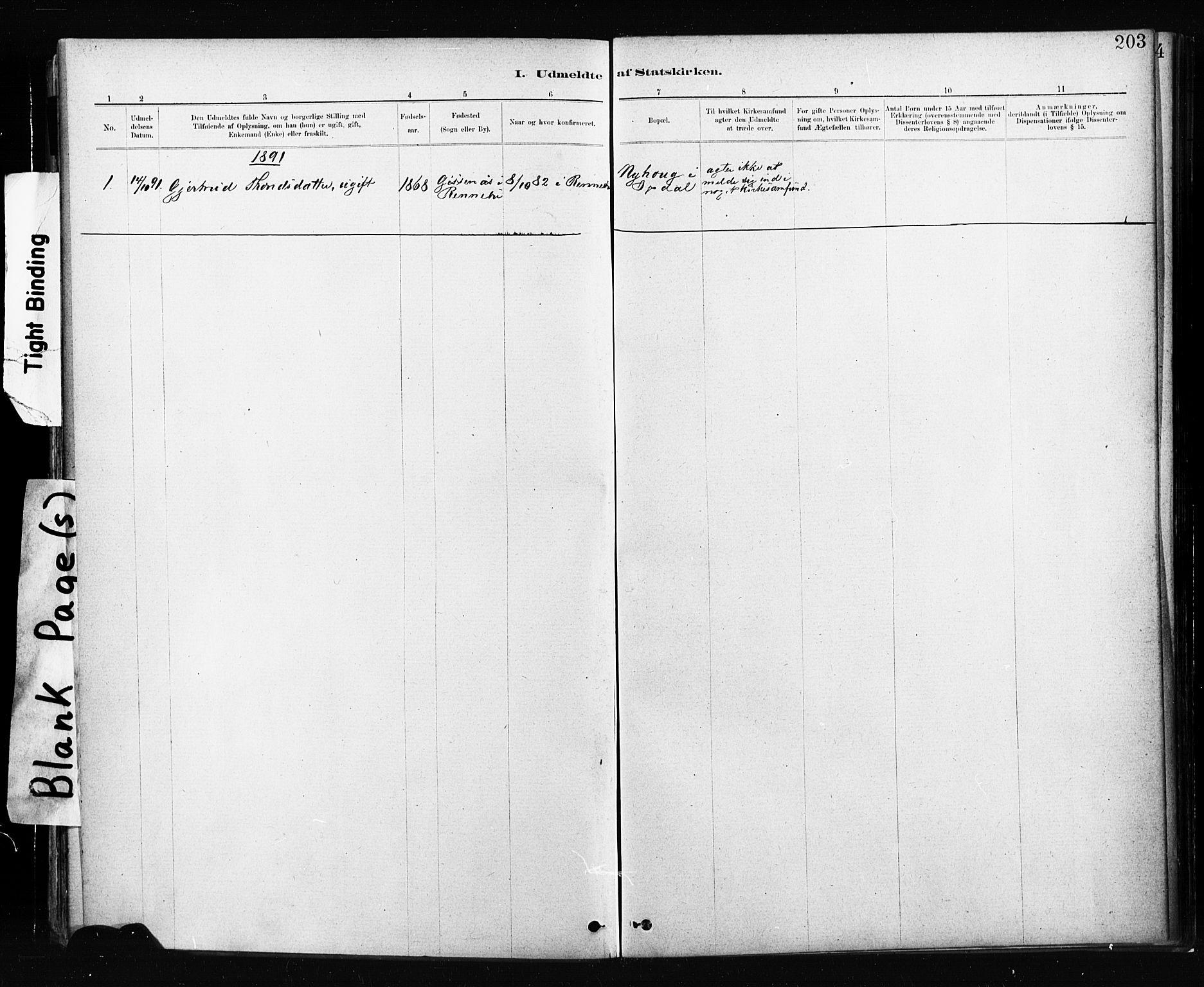 SAT, Ministerialprotokoller, klokkerbøker og fødselsregistre - Sør-Trøndelag, 674/L0871: Ministerialbok nr. 674A03, 1880-1896, s. 203