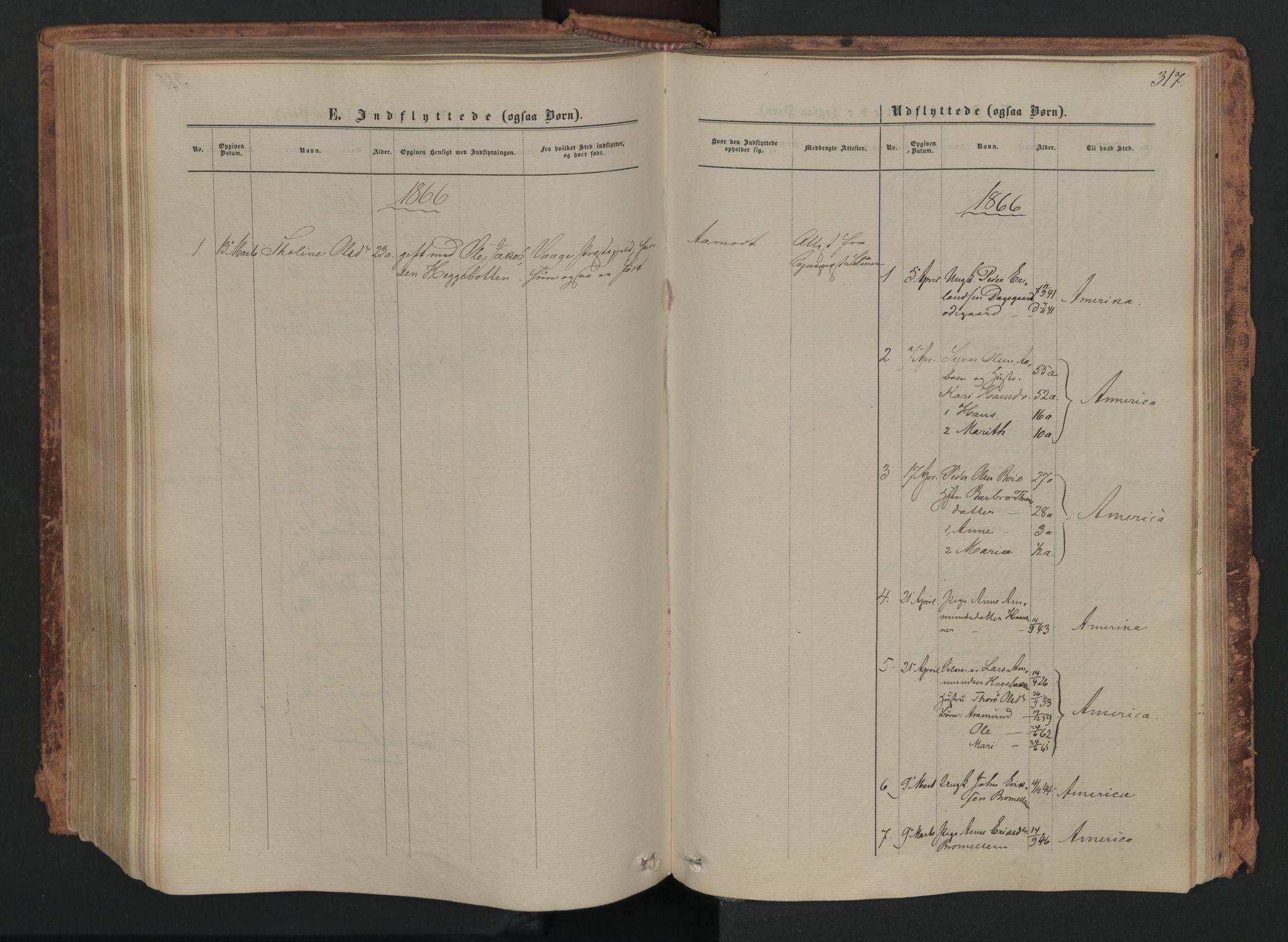SAH, Skjåk prestekontor, Ministerialbok nr. 1, 1863-1879, s. 317