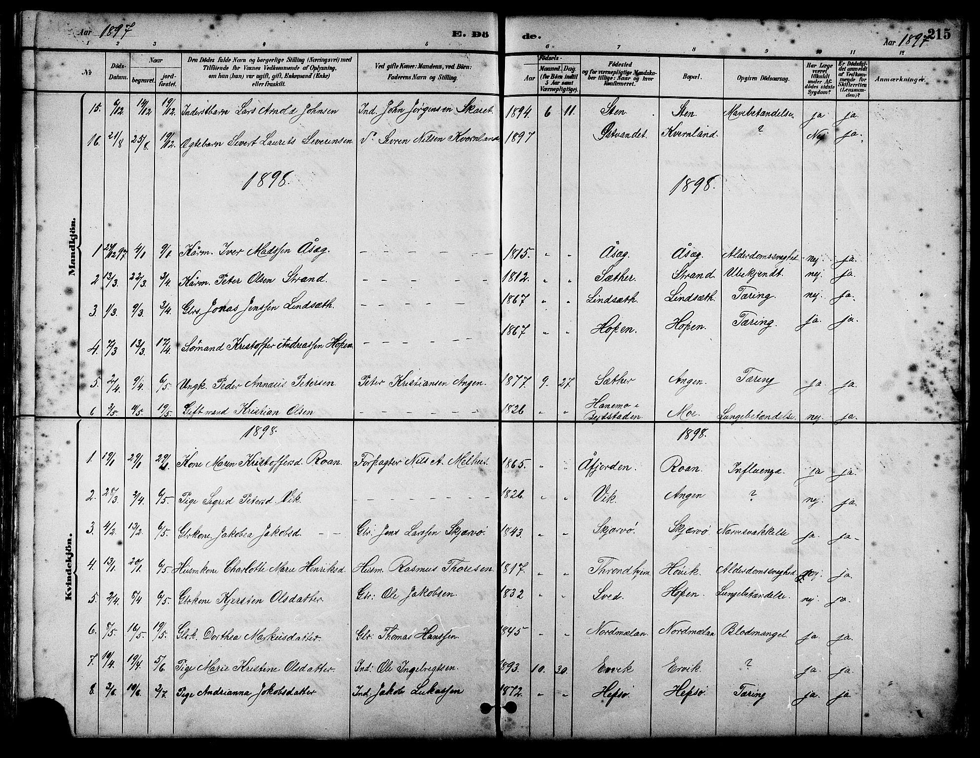 SAT, Ministerialprotokoller, klokkerbøker og fødselsregistre - Sør-Trøndelag, 658/L0726: Klokkerbok nr. 658C02, 1883-1908, s. 215