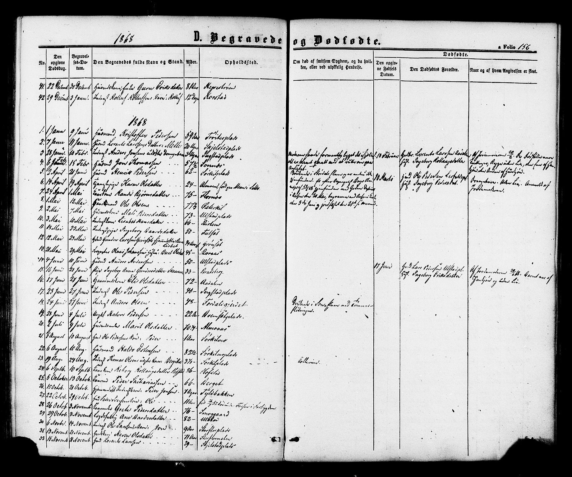 SAT, Ministerialprotokoller, klokkerbøker og fødselsregistre - Nord-Trøndelag, 703/L0029: Ministerialbok nr. 703A02, 1863-1879, s. 156