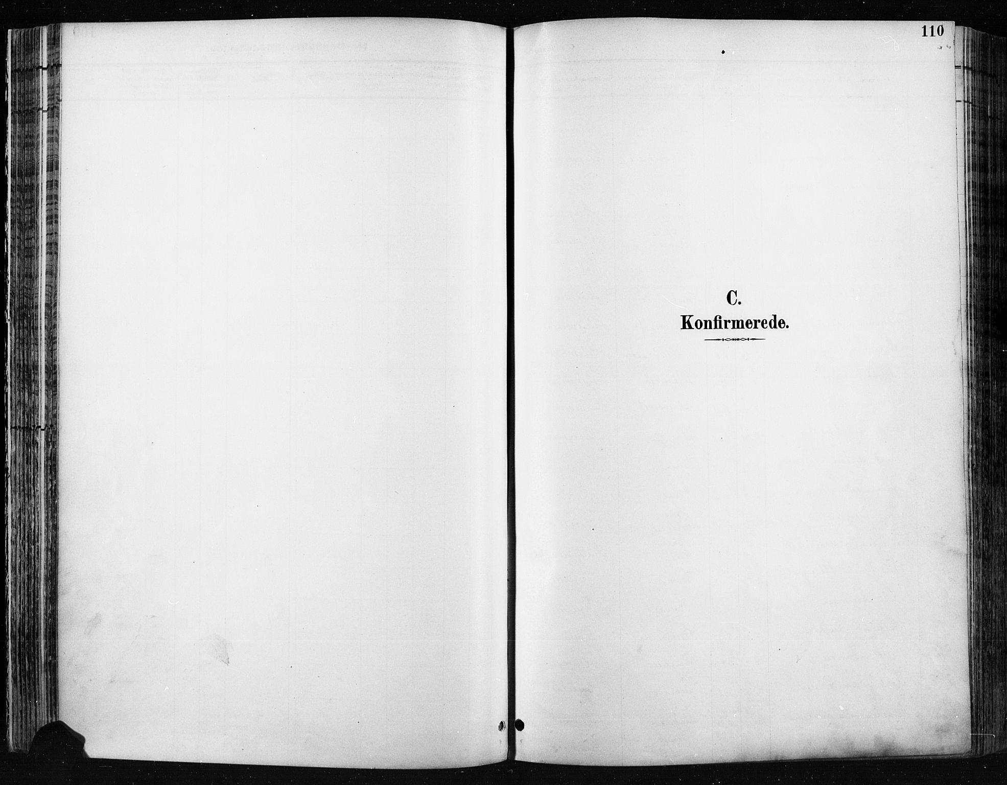 SAH, Jevnaker prestekontor, Ministerialbok nr. 9, 1891-1901, s. 110