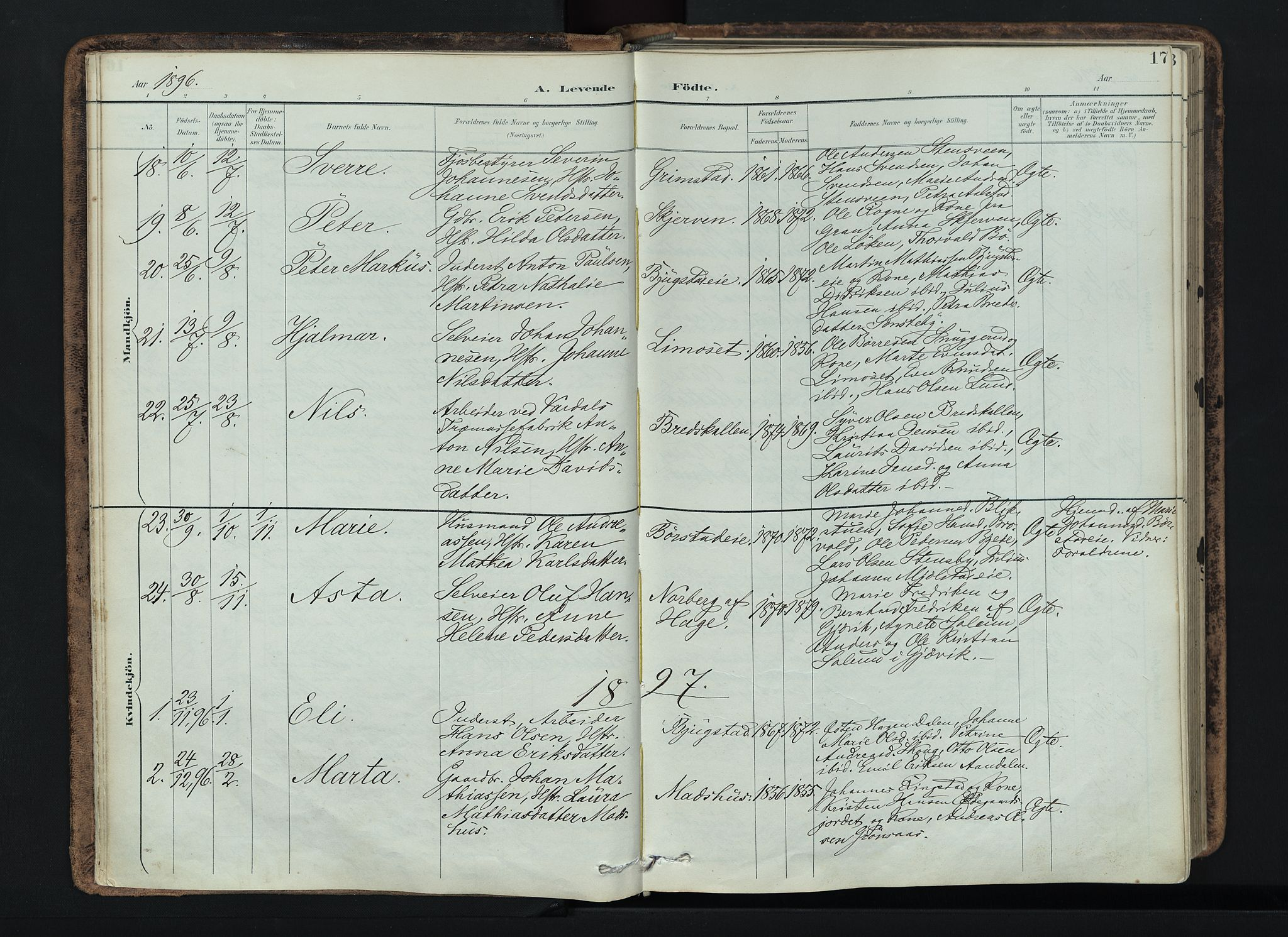 SAH, Vardal prestekontor, H/Ha/Haa/L0019: Ministerialbok nr. 19, 1893-1907, s. 17