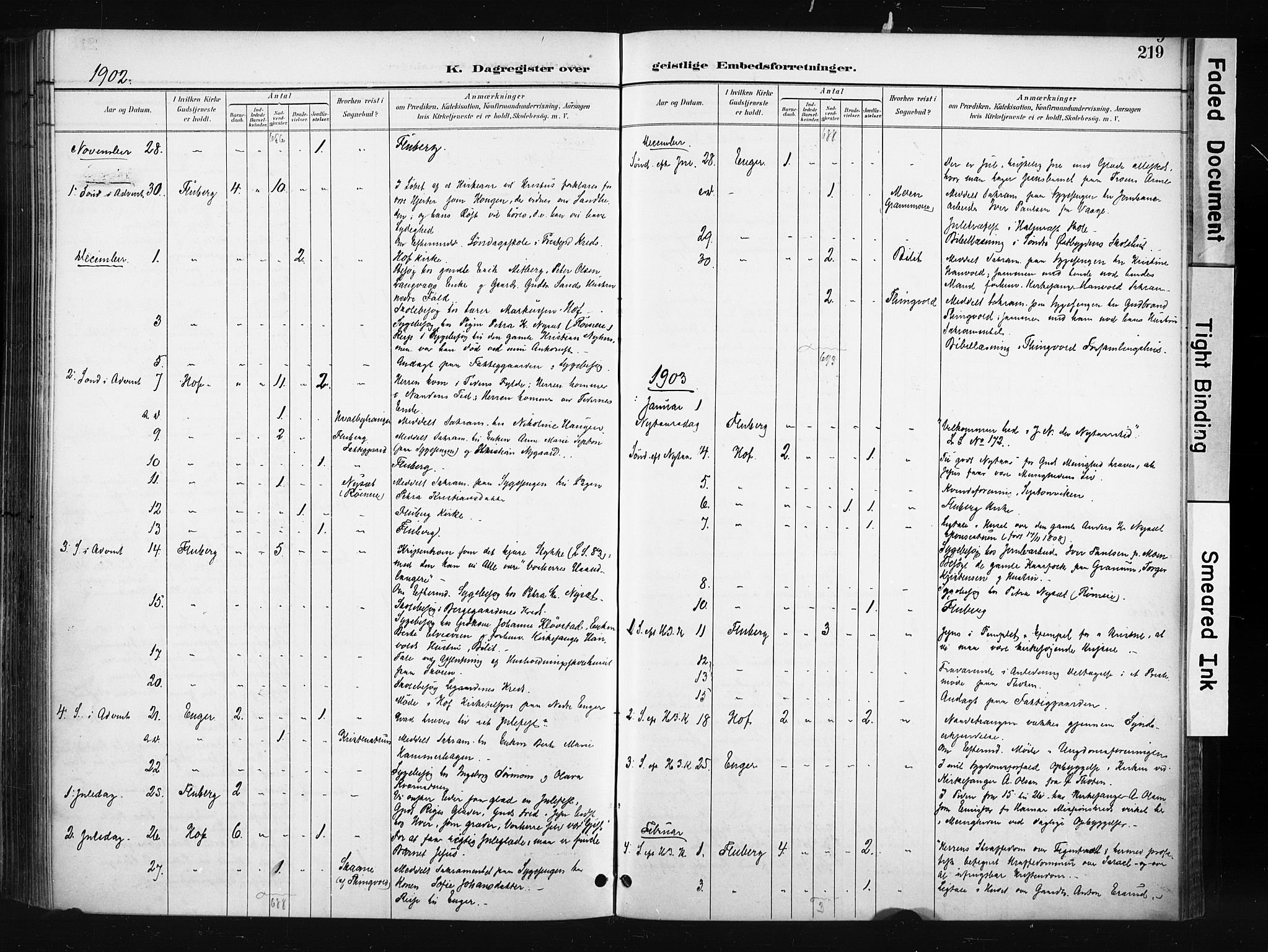 SAH, Søndre Land prestekontor, K/L0004: Ministerialbok nr. 4, 1895-1904, s. 219