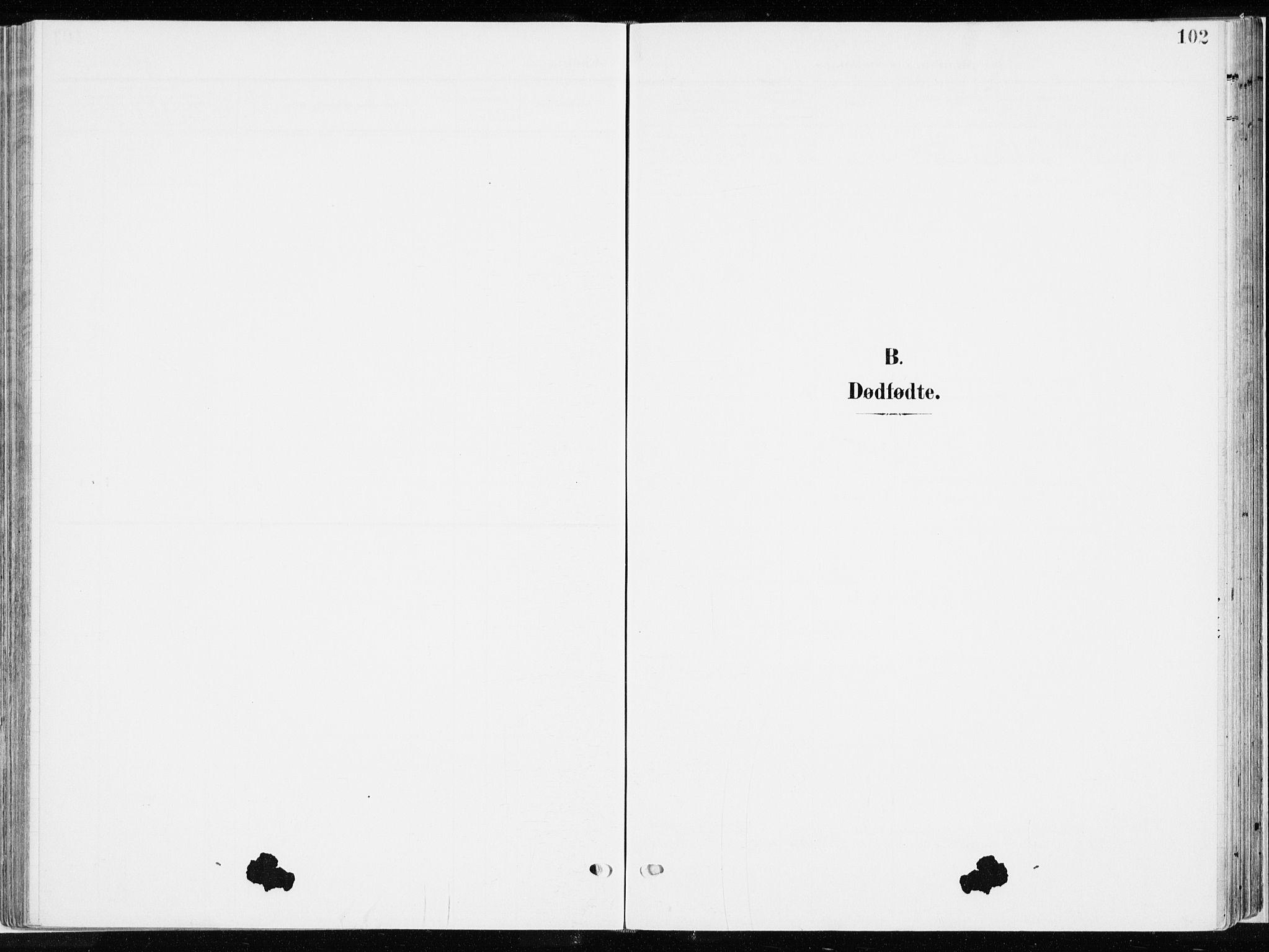 SAH, Ringsaker prestekontor, K/Ka/L0019: Ministerialbok nr. 19, 1905-1920, s. 102