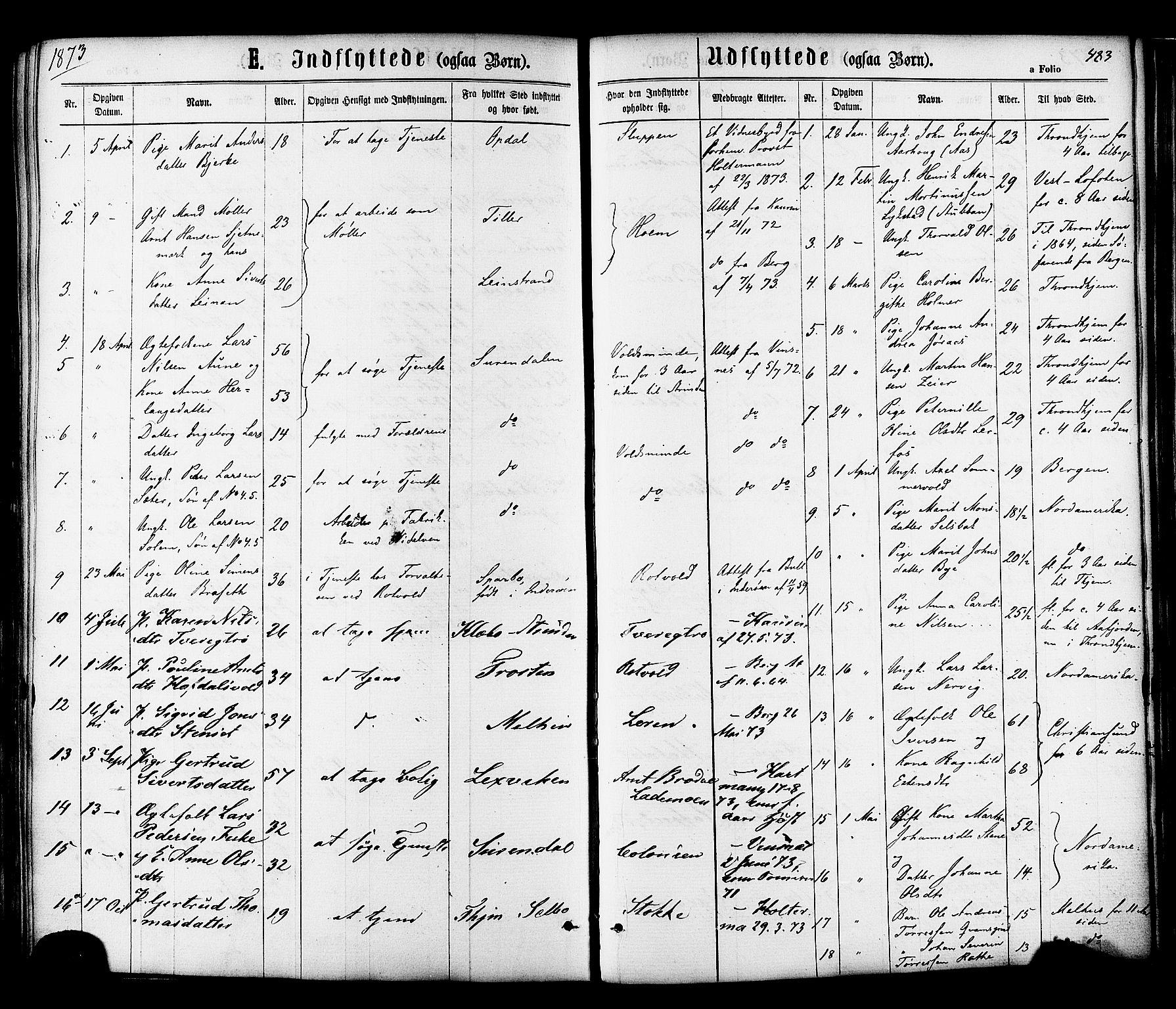 SAT, Ministerialprotokoller, klokkerbøker og fødselsregistre - Sør-Trøndelag, 606/L0293: Ministerialbok nr. 606A08, 1866-1877, s. 483