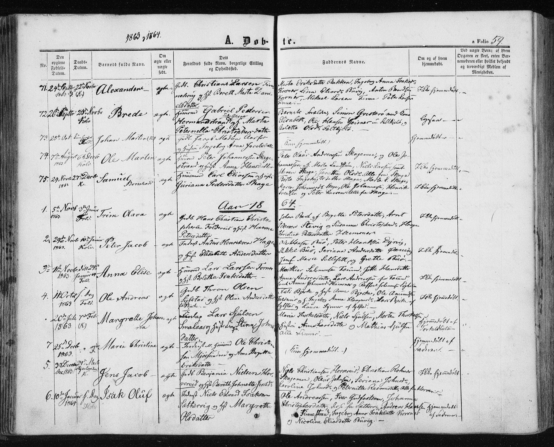 SAT, Ministerialprotokoller, klokkerbøker og fødselsregistre - Nord-Trøndelag, 780/L0641: Ministerialbok nr. 780A06, 1857-1874, s. 59