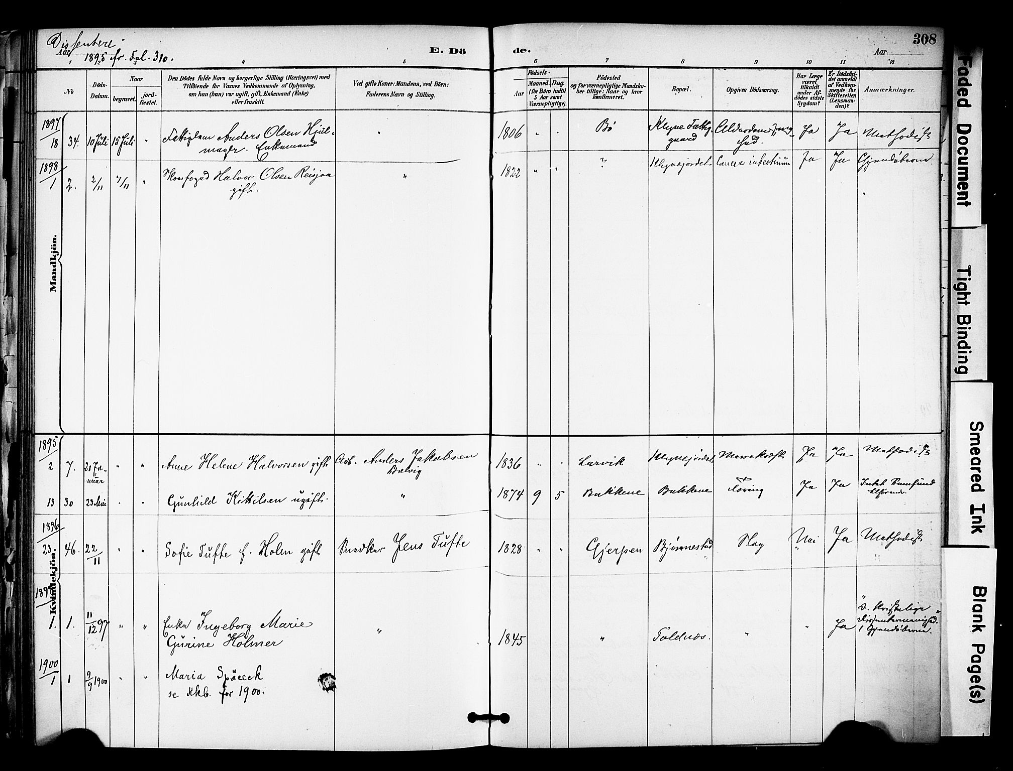SAKO, Solum kirkebøker, F/Fa/L0010: Ministerialbok nr. I 10, 1888-1898, s. 308