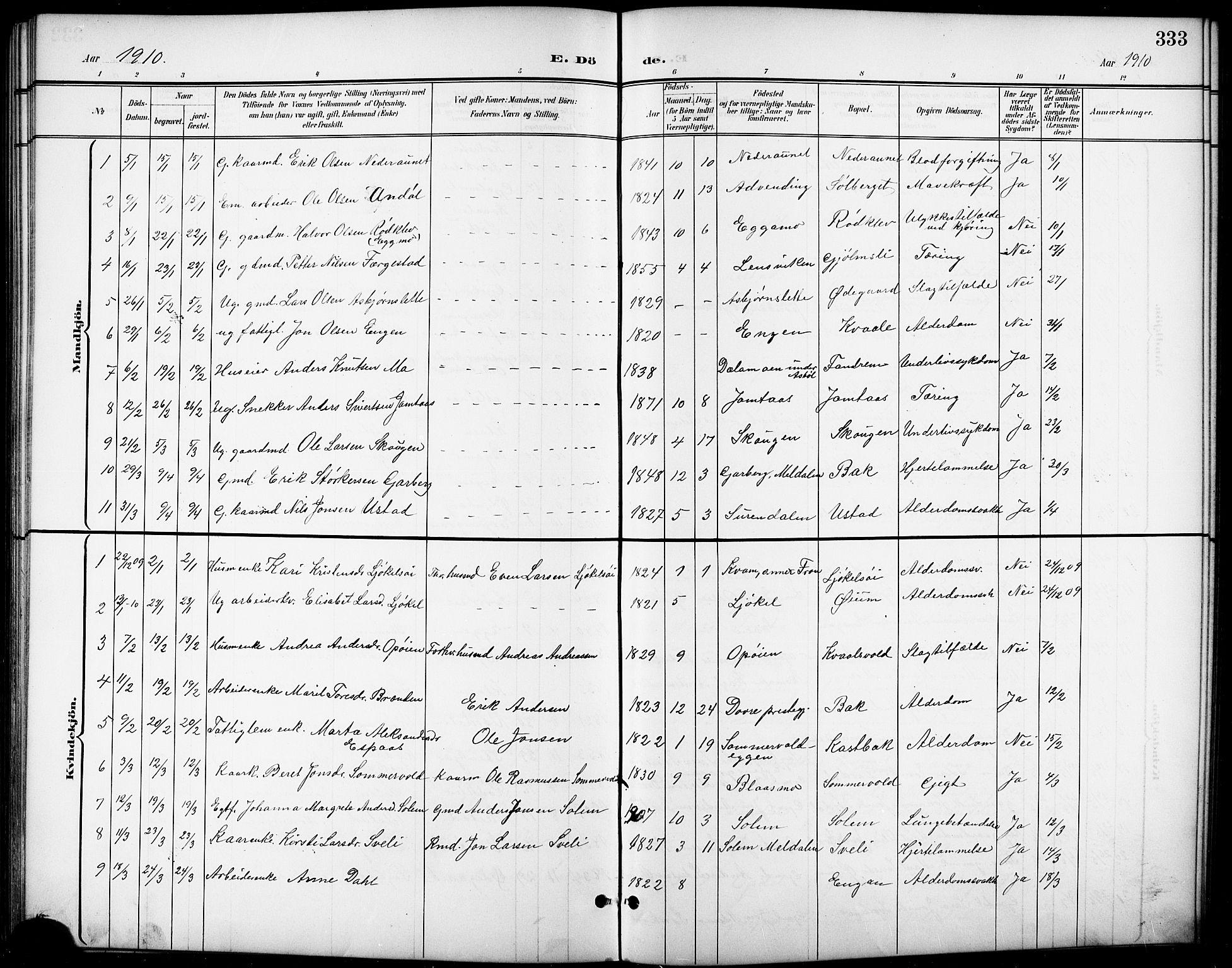 SAT, Ministerialprotokoller, klokkerbøker og fødselsregistre - Sør-Trøndelag, 668/L0819: Klokkerbok nr. 668C08, 1899-1912, s. 333