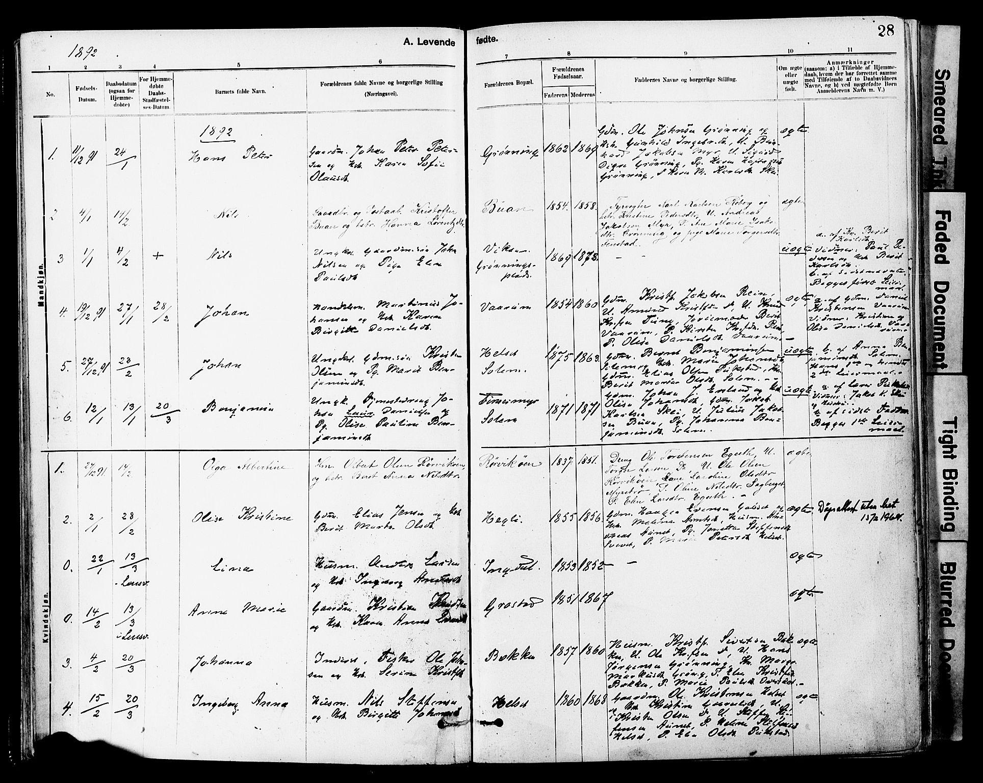 SAT, Ministerialprotokoller, klokkerbøker og fødselsregistre - Sør-Trøndelag, 646/L0615: Ministerialbok nr. 646A13, 1885-1900, s. 28