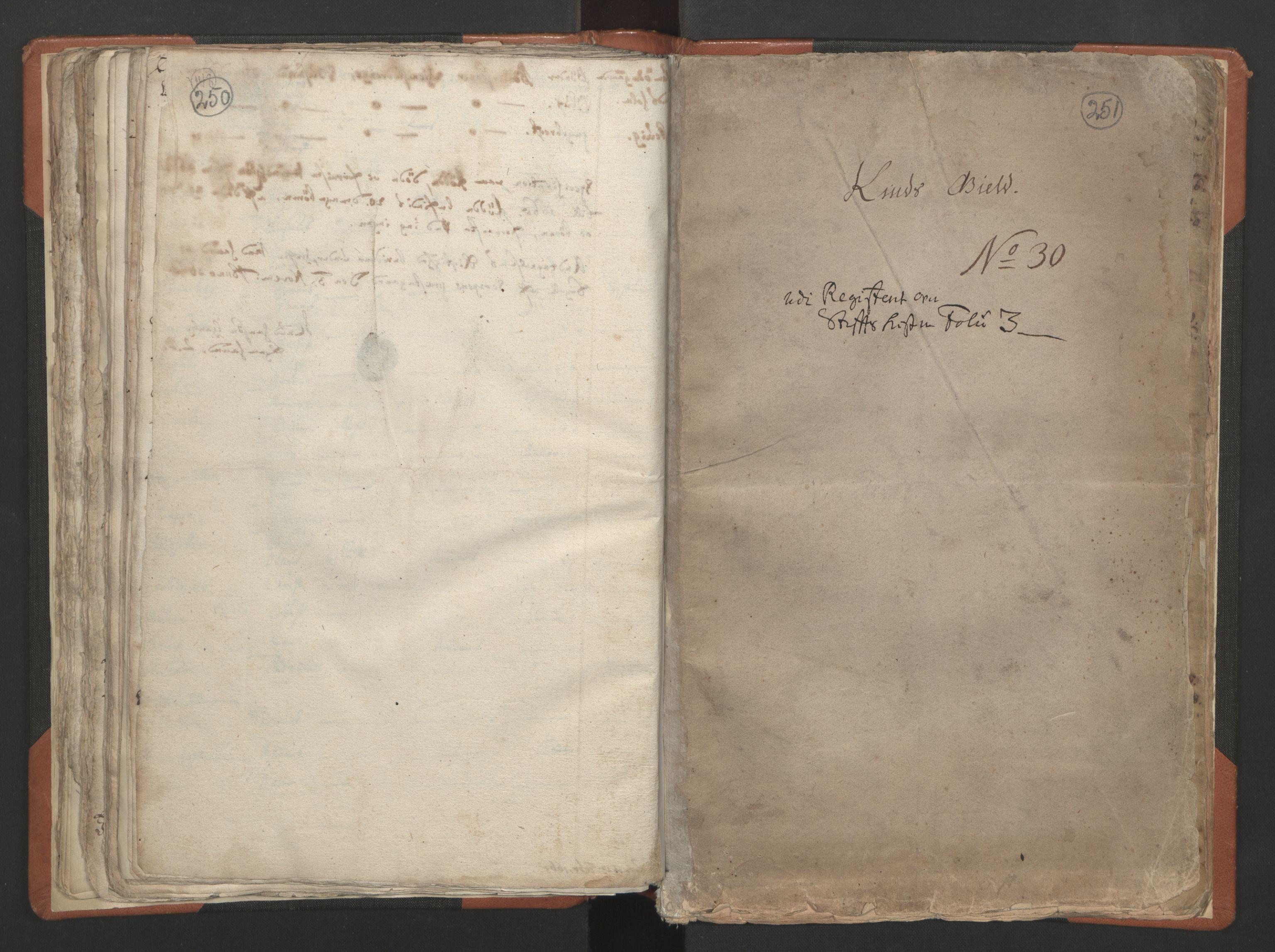 RA, Sogneprestenes manntall 1664-1666, nr. 24: Sunnfjord prosti, 1664-1666, s. 250-251