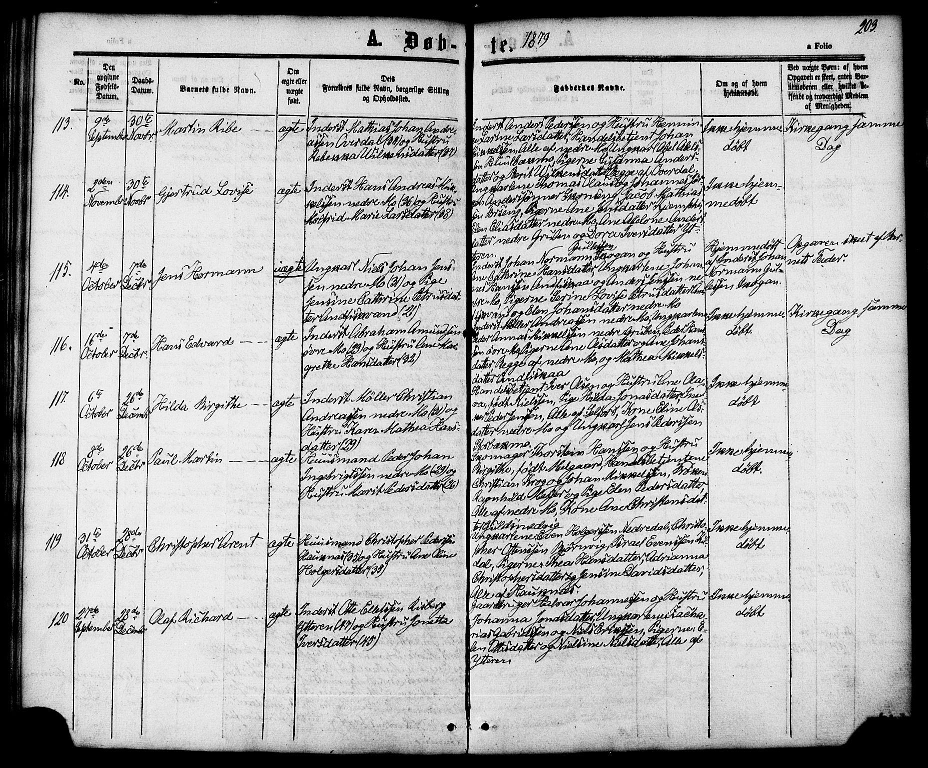 SAT, Ministerialprotokoller, klokkerbøker og fødselsregistre - Nordland, 827/L0393: Ministerialbok nr. 827A05, 1863-1883, s. 203