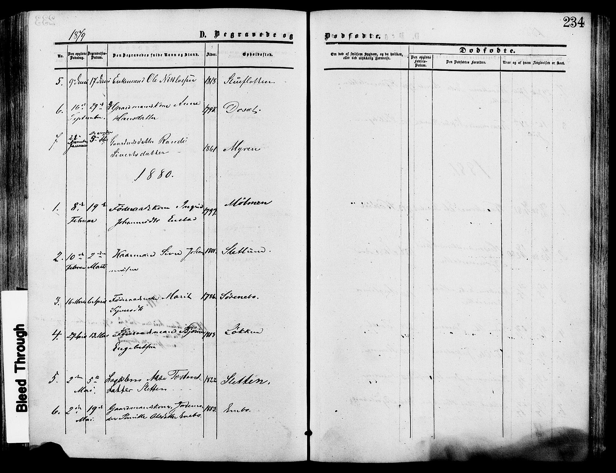 SAH, Lesja prestekontor, Ministerialbok nr. 9, 1854-1889, s. 234