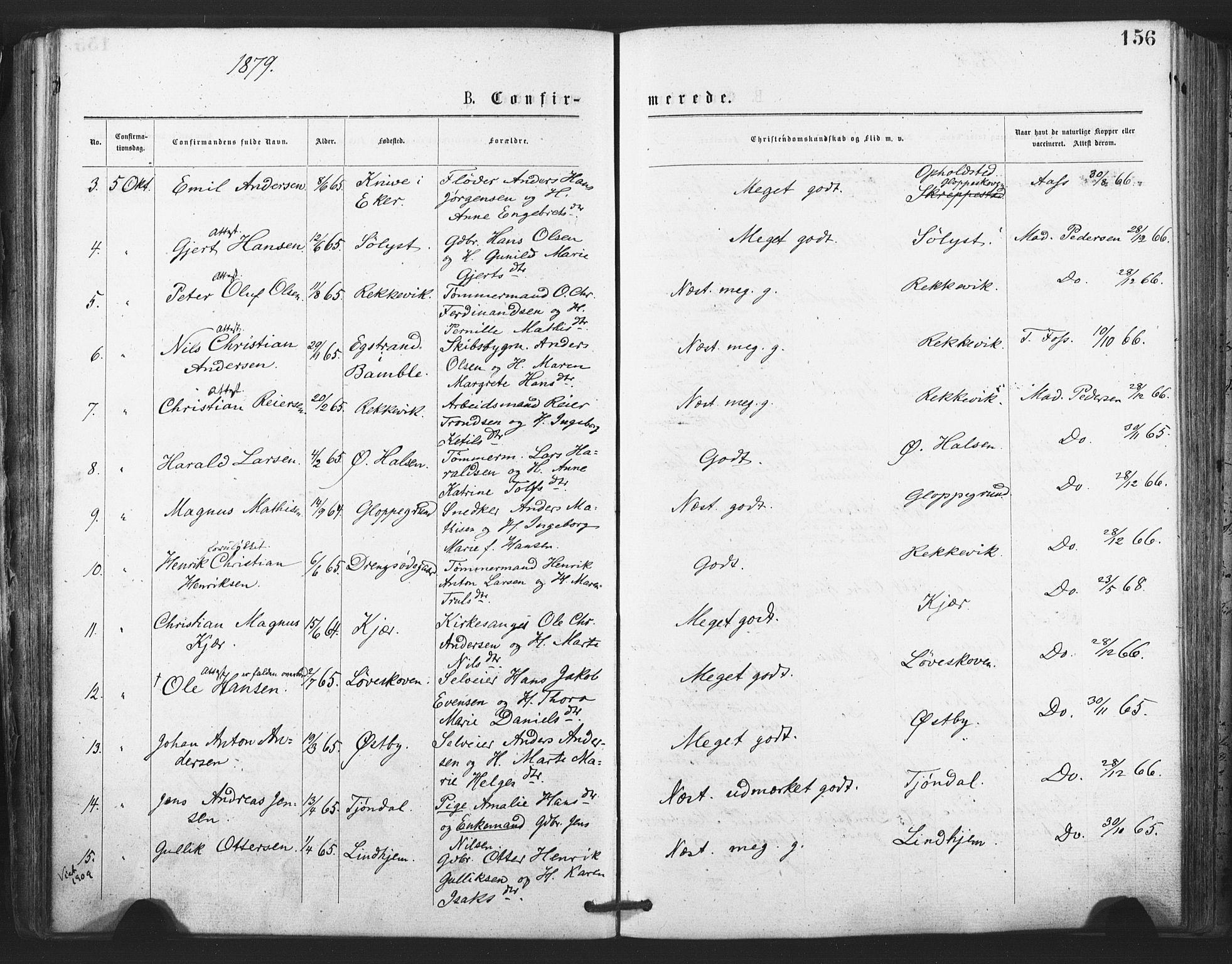 SAKO, Tjølling kirkebøker, F/Fa/L0008: Ministerialbok nr. 8, 1877-1886, s. 156