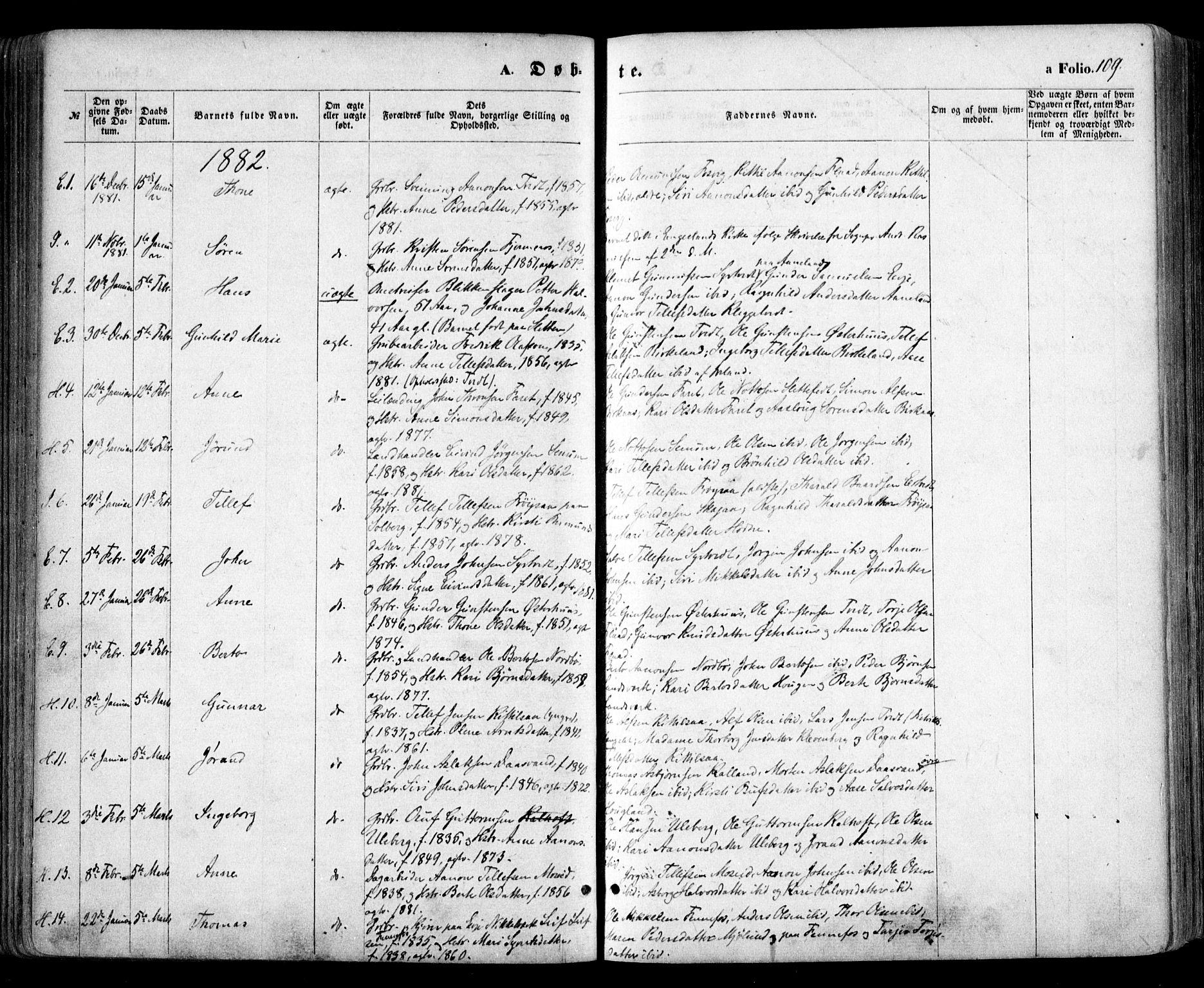SAK, Evje sokneprestkontor, F/Fa/Faa/L0006: Ministerialbok nr. A 6, 1866-1884, s. 109