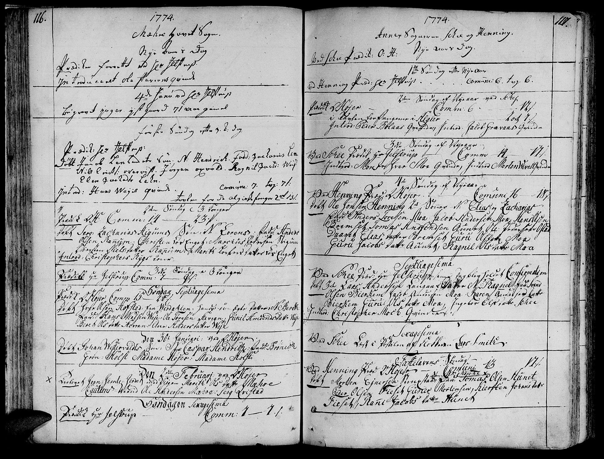 SAT, Ministerialprotokoller, klokkerbøker og fødselsregistre - Nord-Trøndelag, 735/L0331: Ministerialbok nr. 735A02, 1762-1794, s. 116-117