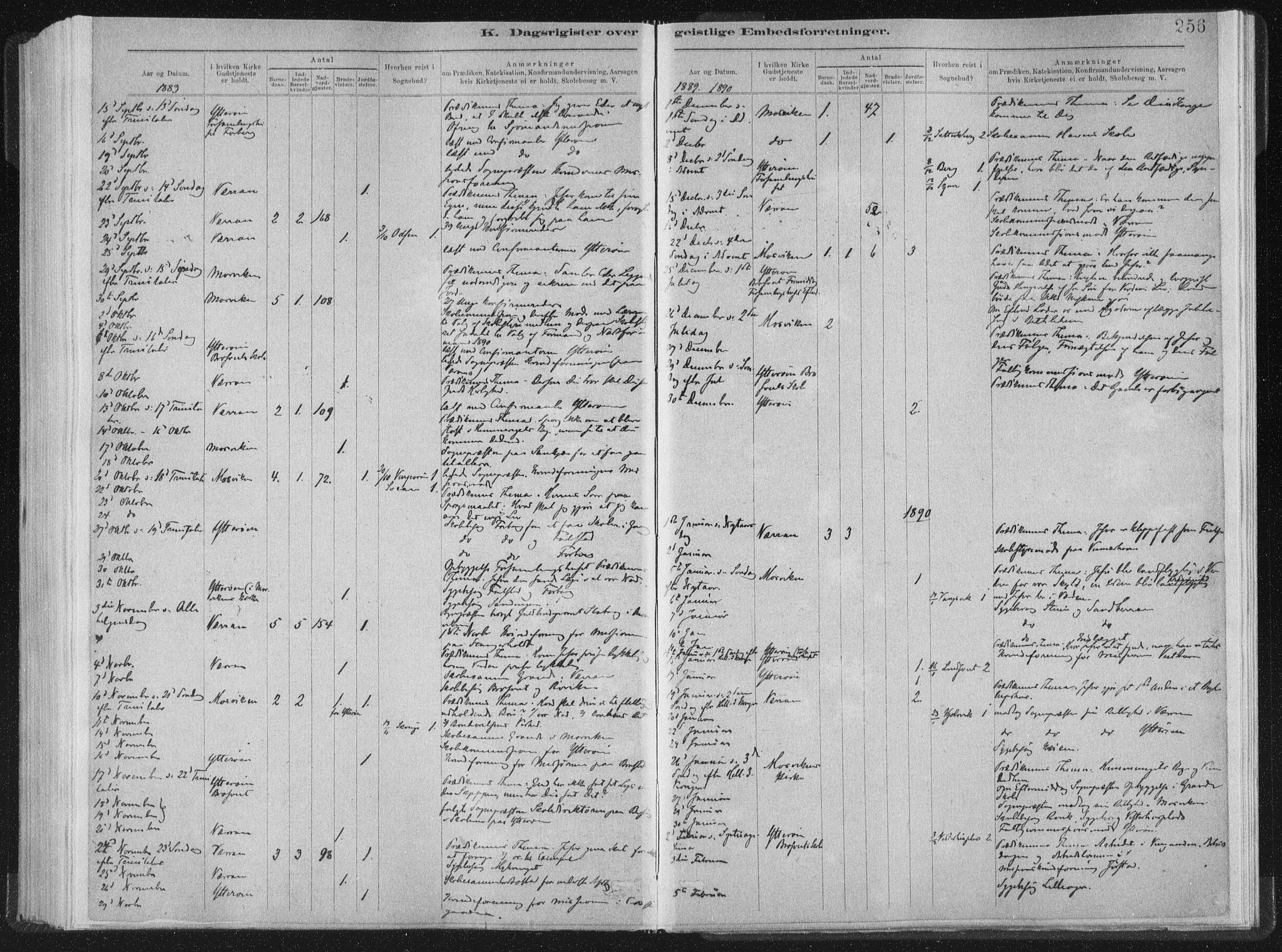 SAT, Ministerialprotokoller, klokkerbøker og fødselsregistre - Nord-Trøndelag, 722/L0220: Ministerialbok nr. 722A07, 1881-1908, s. 256