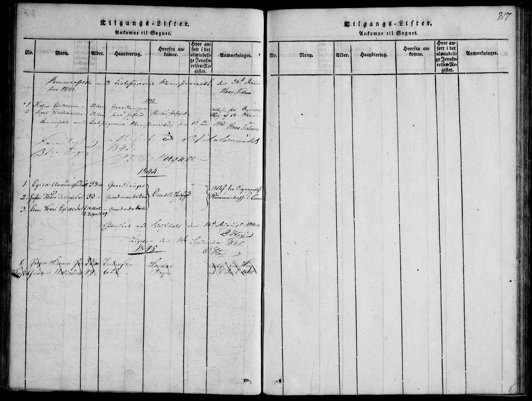 SAKO, Nissedal kirkebøker, F/Fb/L0001: Ministerialbok nr. II 1, 1814-1845, s. 317