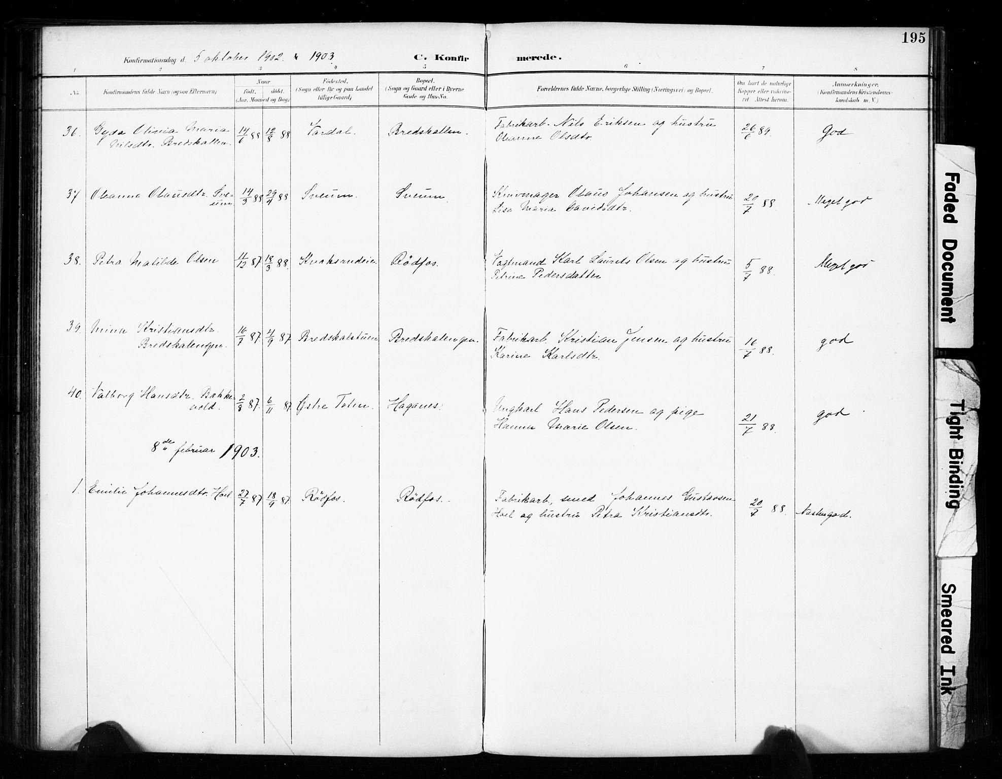 SAH, Vestre Toten prestekontor, H/Ha/Haa/L0011: Ministerialbok nr. 11, 1895-1906, s. 195