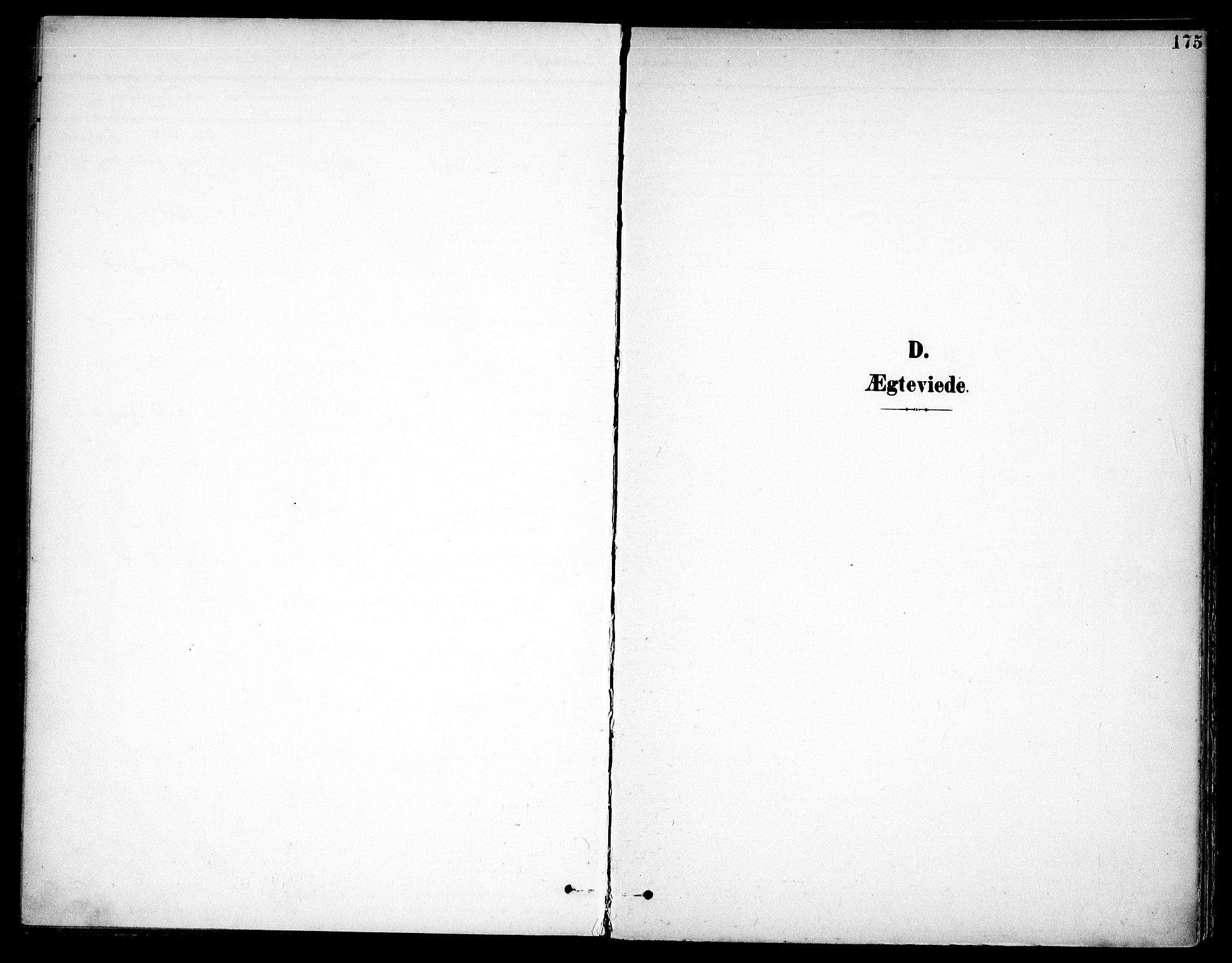 SAO, Høland prestekontor Kirkebøker, F/Fa/L0015: Ministerialbok nr. I 15, 1897-1912, s. 175