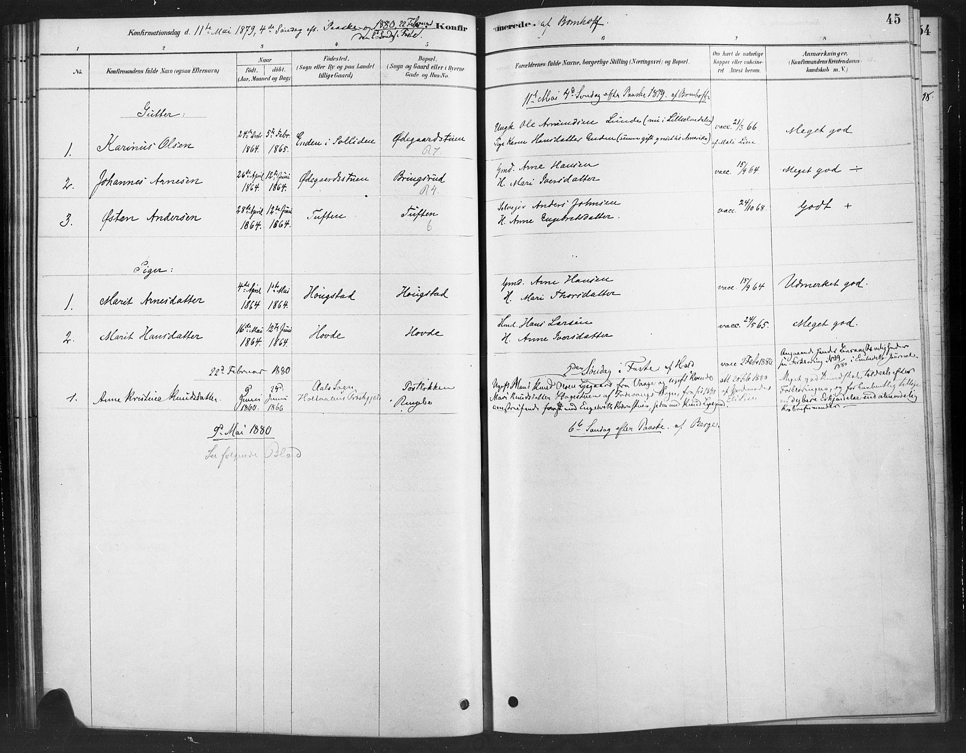 SAH, Ringebu prestekontor, Ministerialbok nr. 10, 1878-1898, s. 45