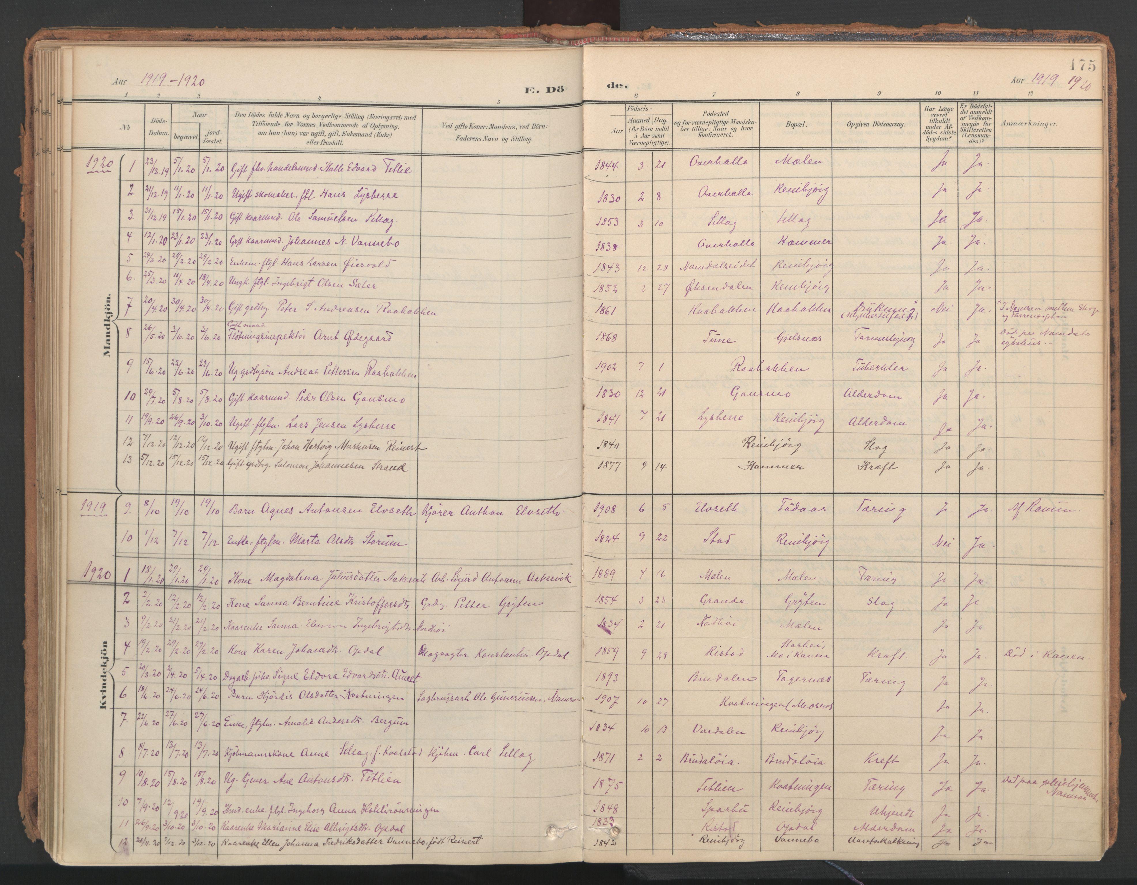 SAT, Ministerialprotokoller, klokkerbøker og fødselsregistre - Nord-Trøndelag, 766/L0564: Ministerialbok nr. 767A02, 1900-1932, s. 175